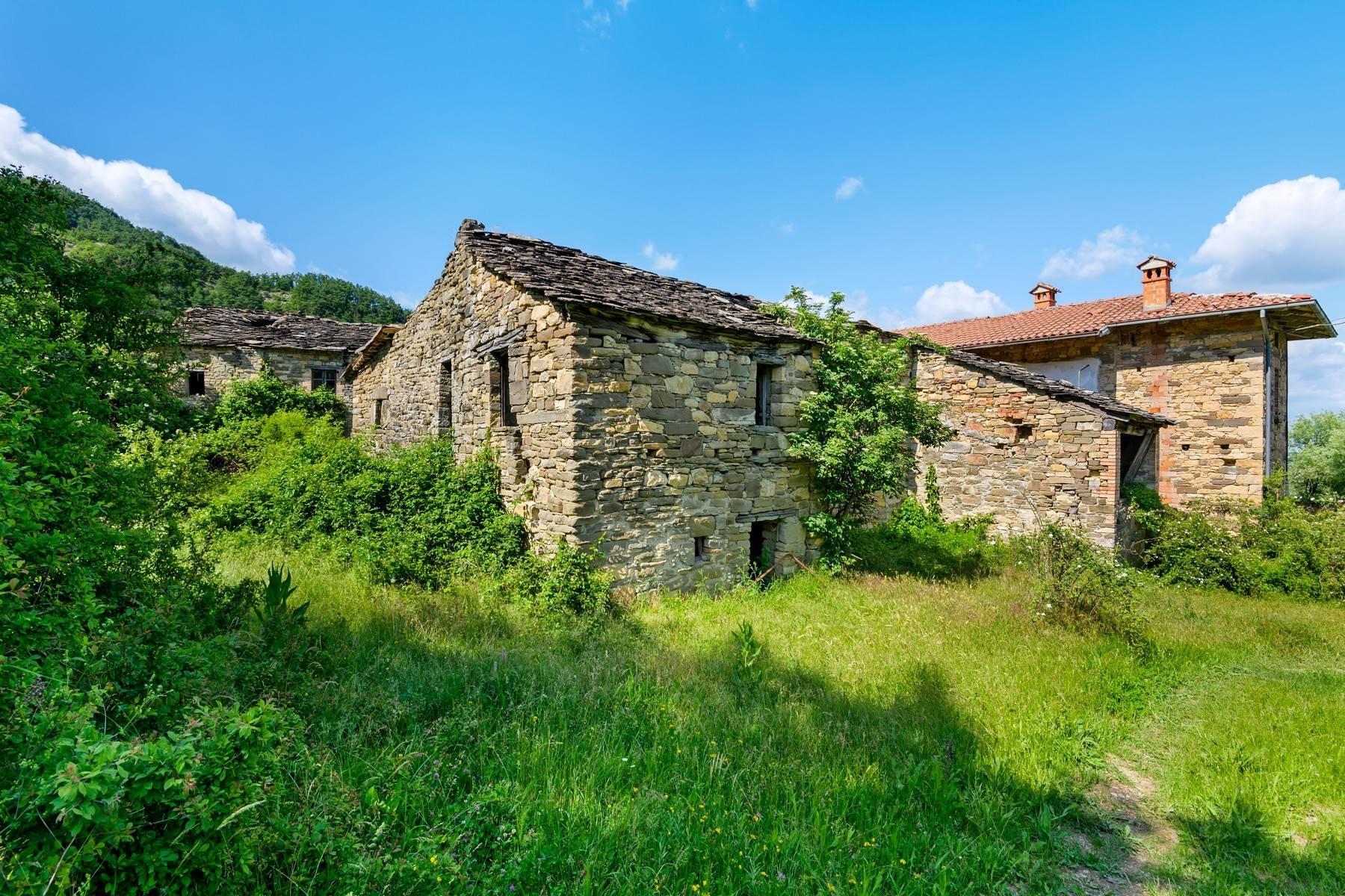 Magnifique château du XIIIe siècle avec fermes - 13