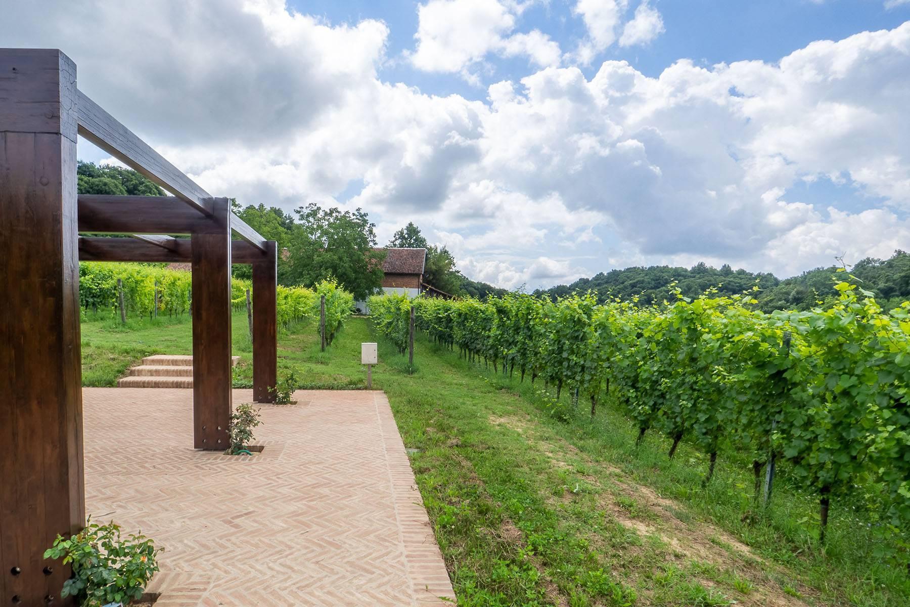 Domaine viticole dans la région du Roero - 4