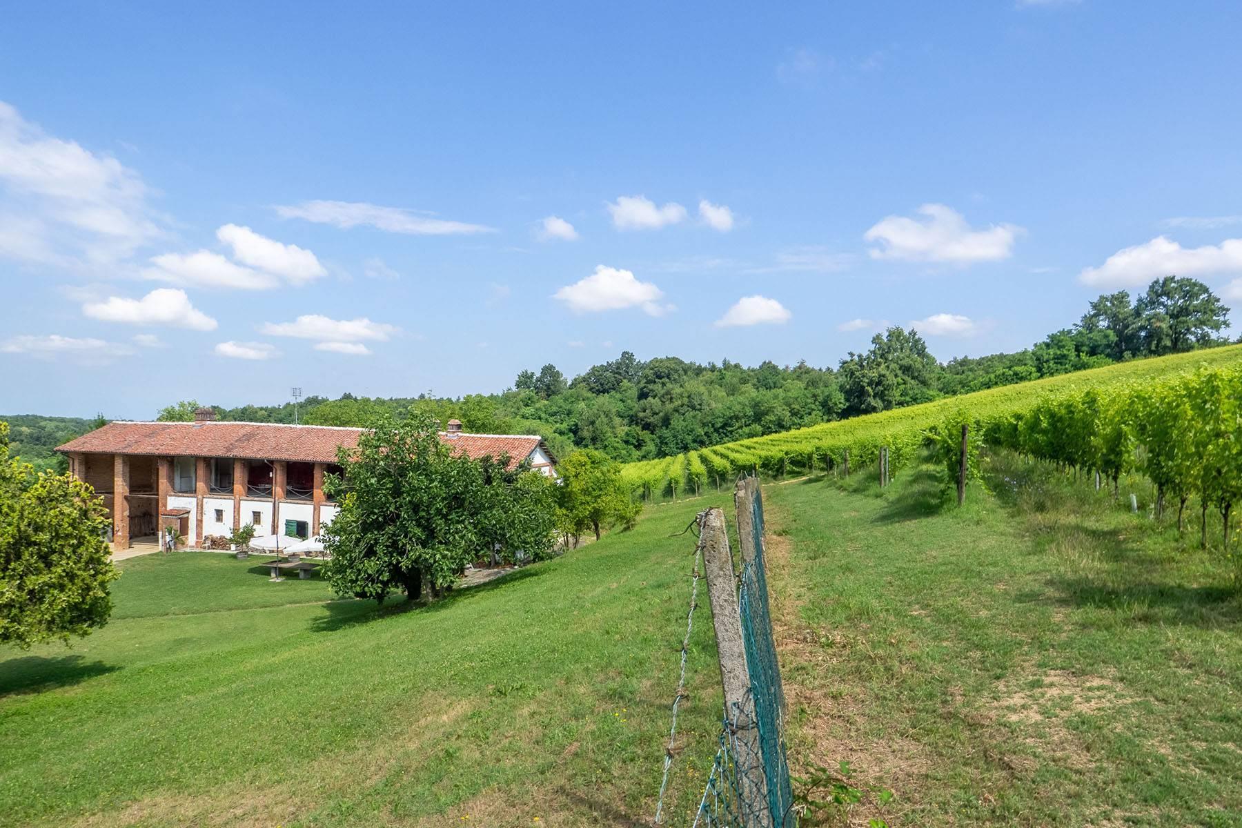 Domaine viticole dans la région du Roero - 3