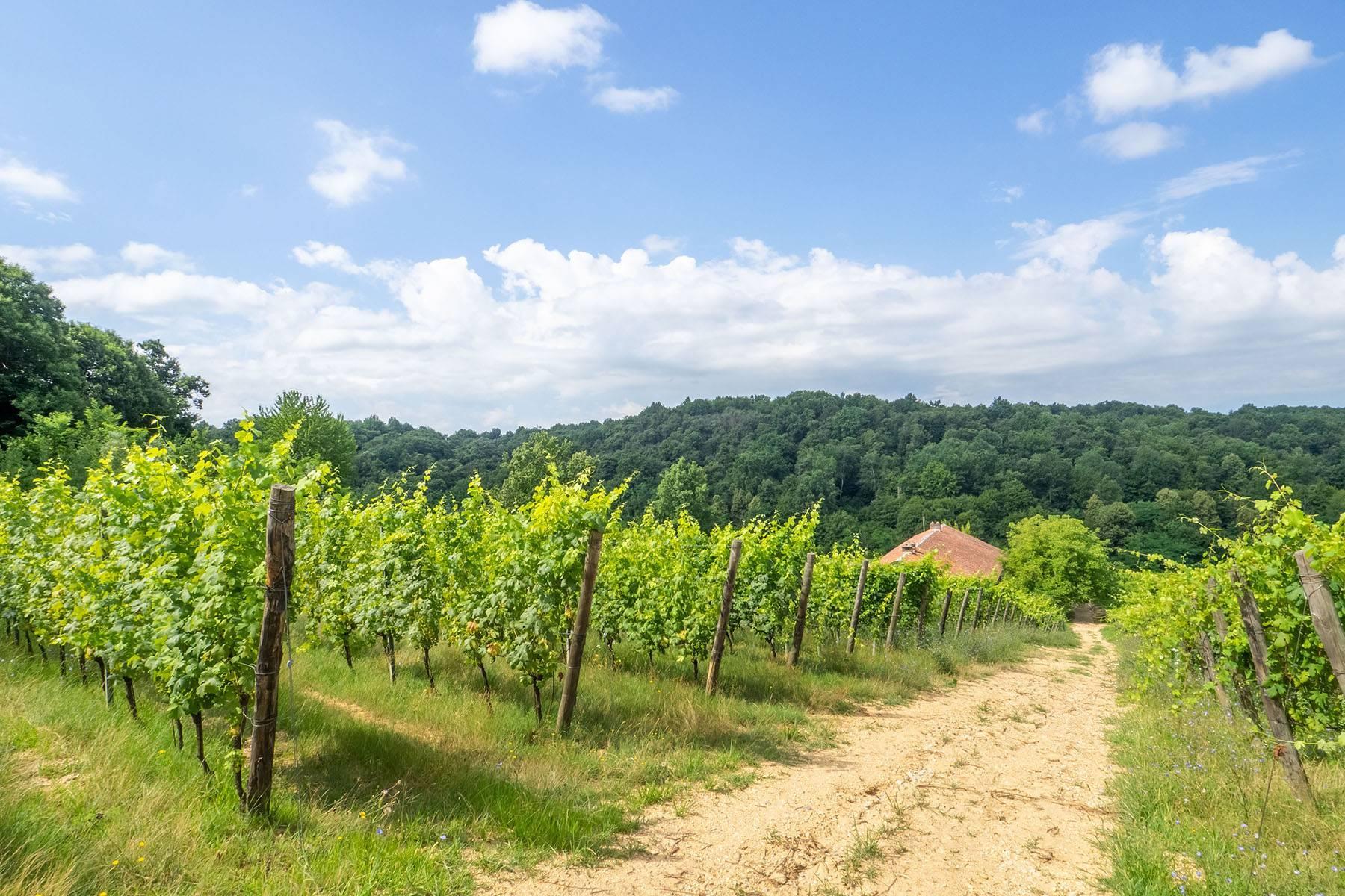 Domaine viticole dans la région du Roero - 20