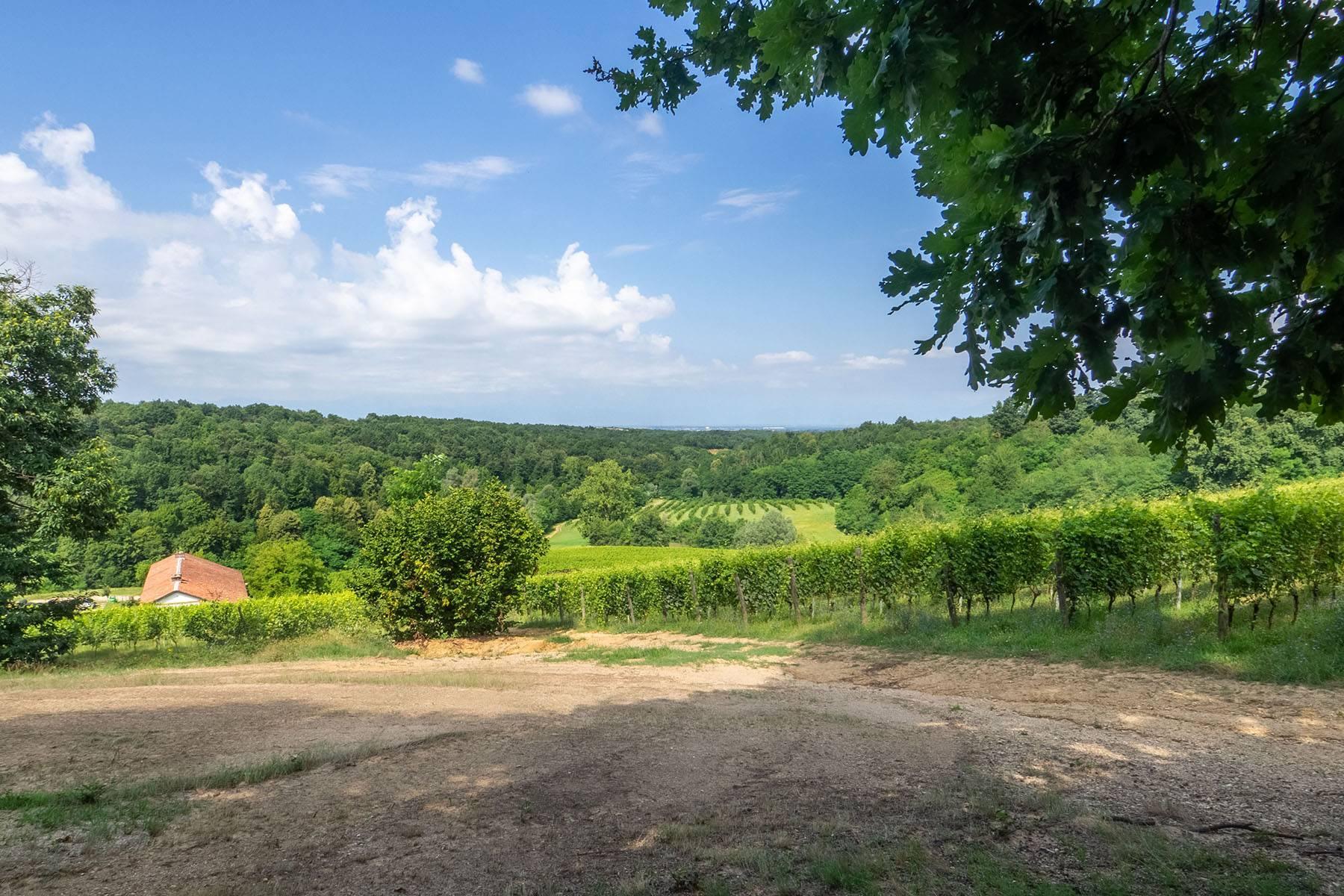 Domaine viticole dans la région du Roero - 10
