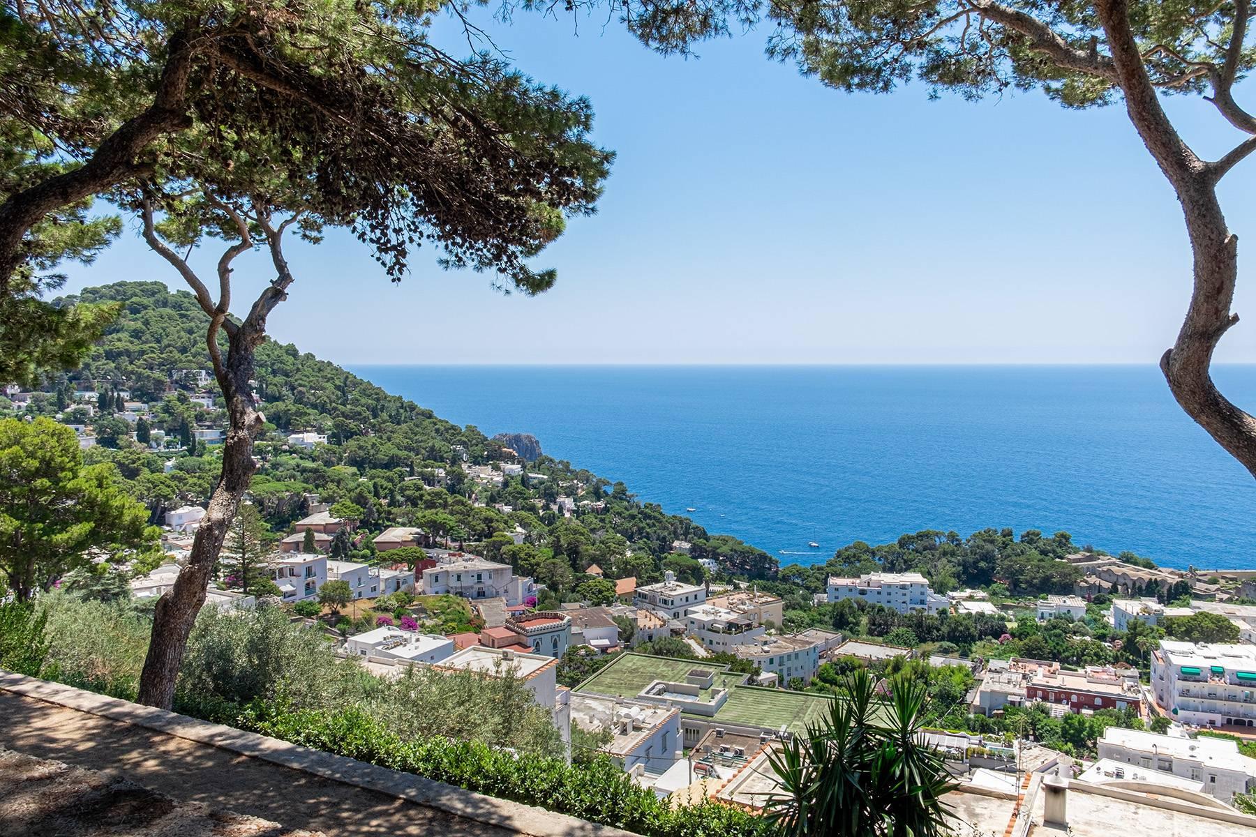 Superbe villa avec piscine donnant sur Capri et la mer - 28