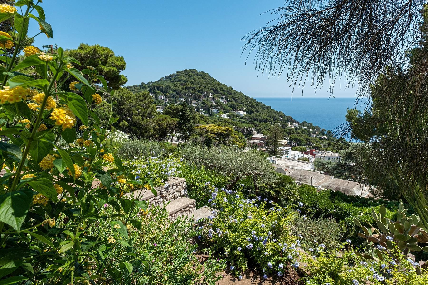 Superbe villa avec piscine donnant sur Capri et la mer - 35