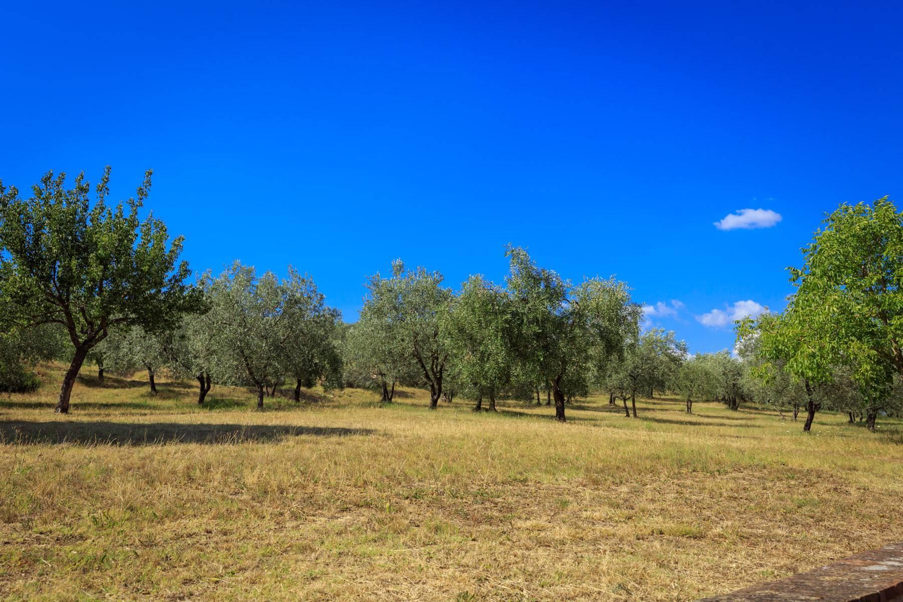 Grande villa antica con oliveto a 10 minuti da Firenze - 15