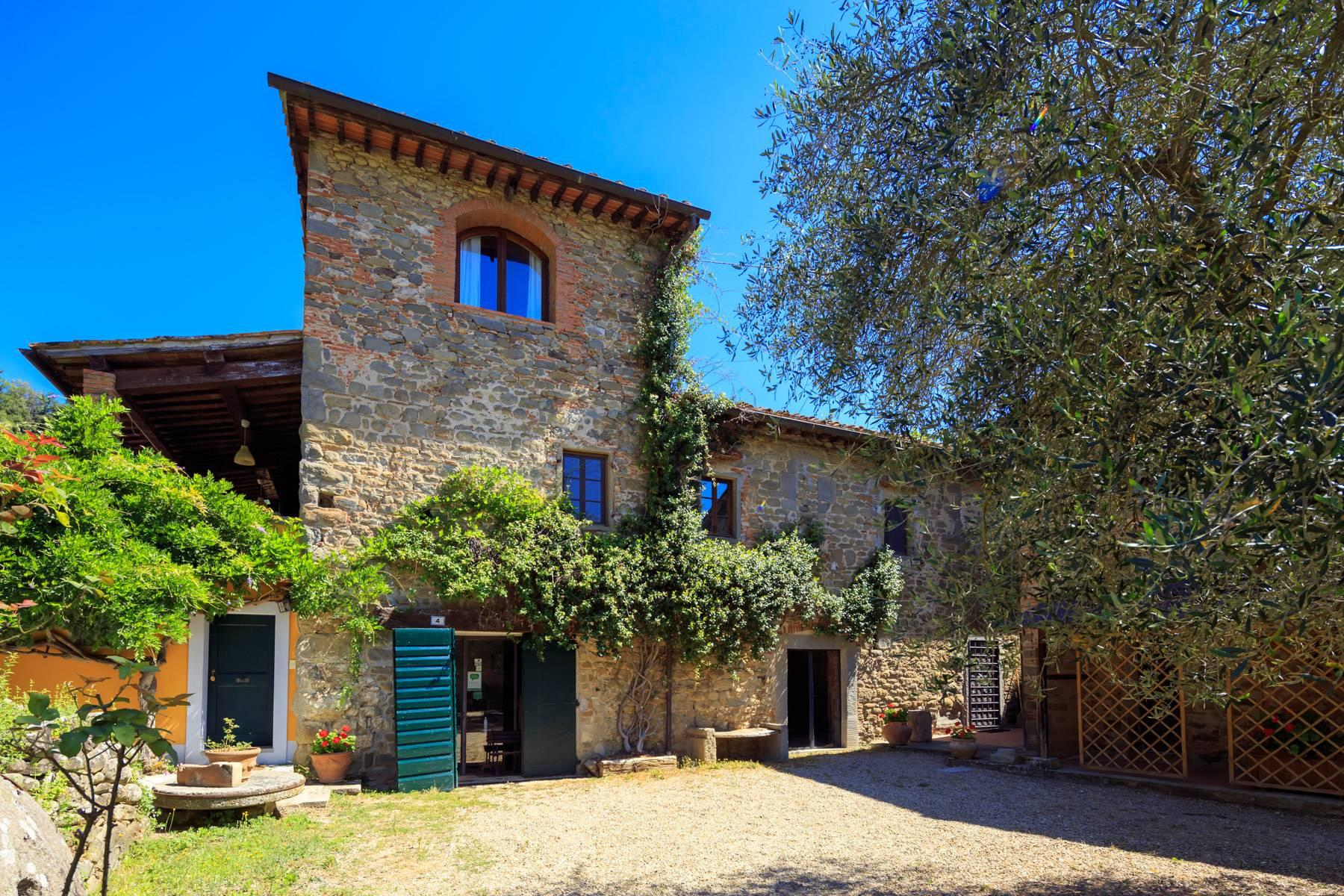 Beautiful Hamlet with an Ancient-Mill in the heart of the Arno Valley - 1