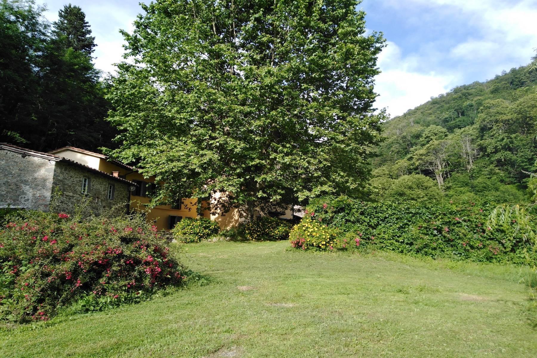 Maison de campagne enchantée sur les collines autour de Lucca - 16