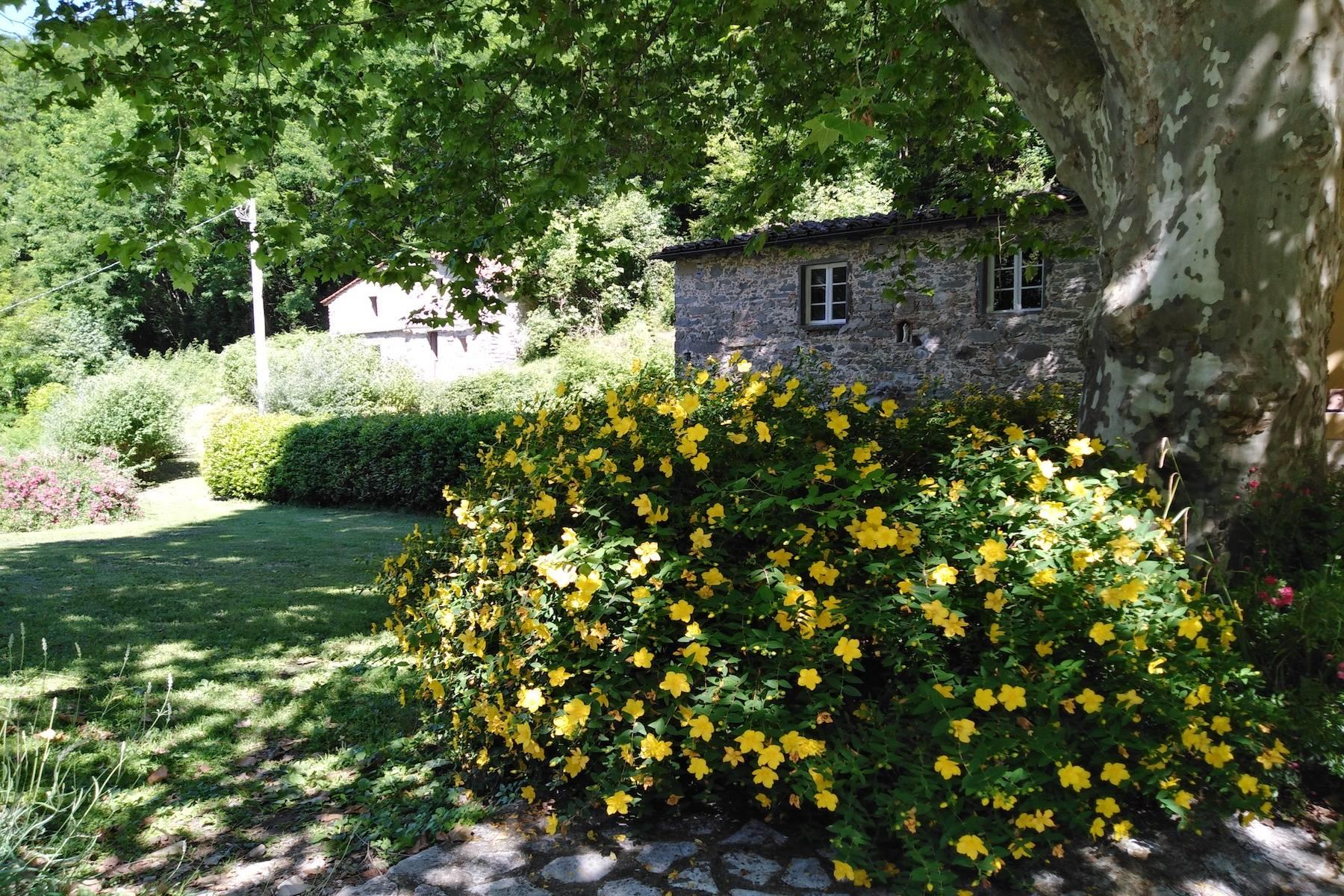 Maison de campagne enchantée sur les collines autour de Lucca - 17