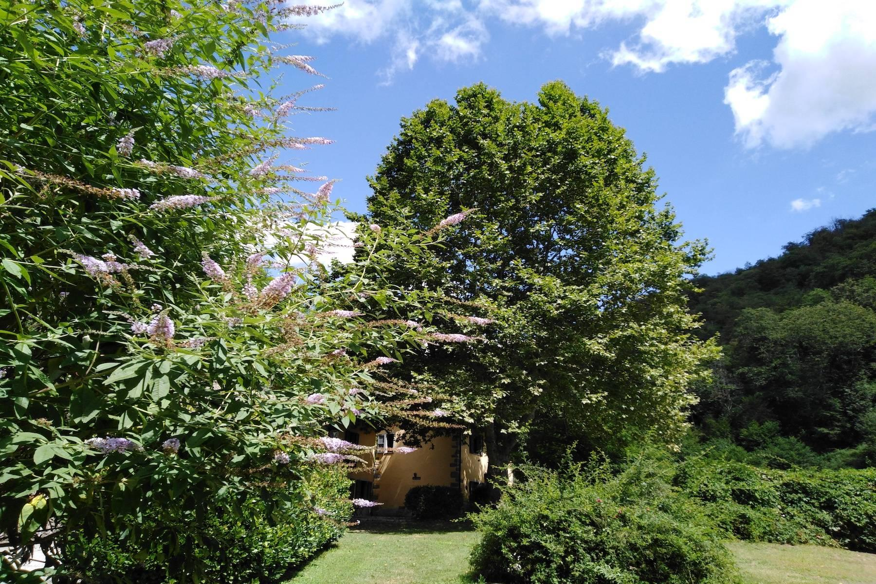 Maison de campagne enchantée sur les collines autour de Lucca - 19