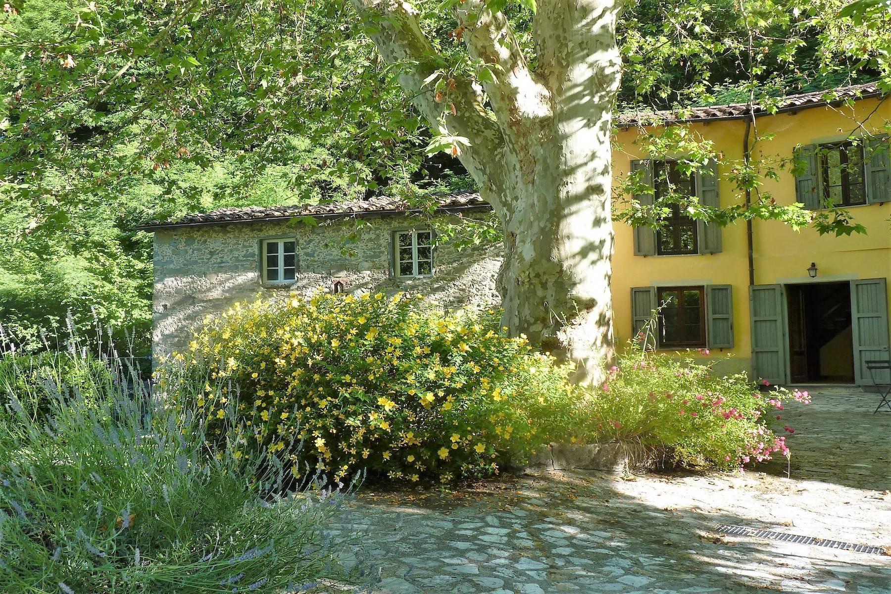 Maison de campagne enchantée sur les collines autour de Lucca - 27