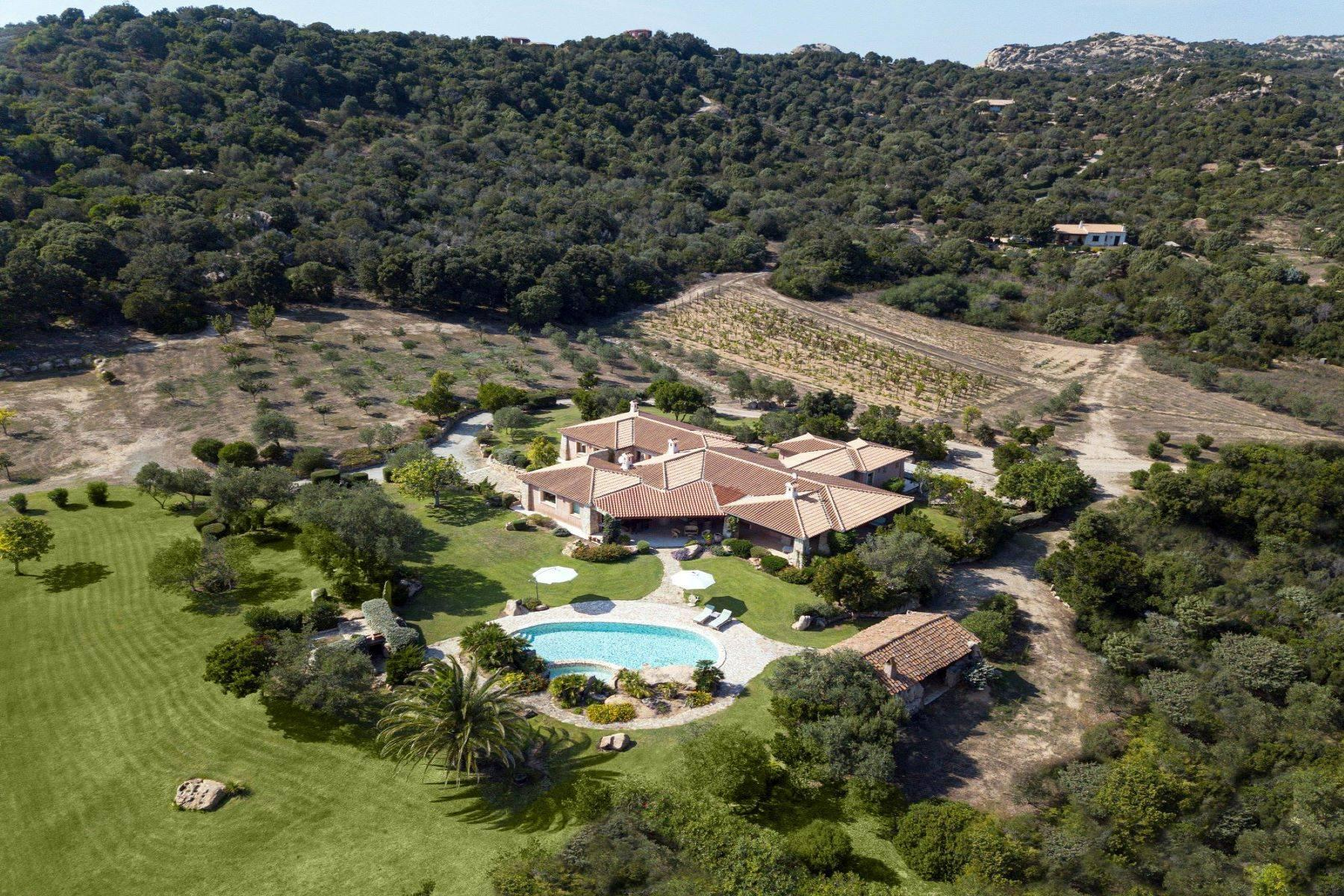 Amazing country estate of 20 hectares - 11