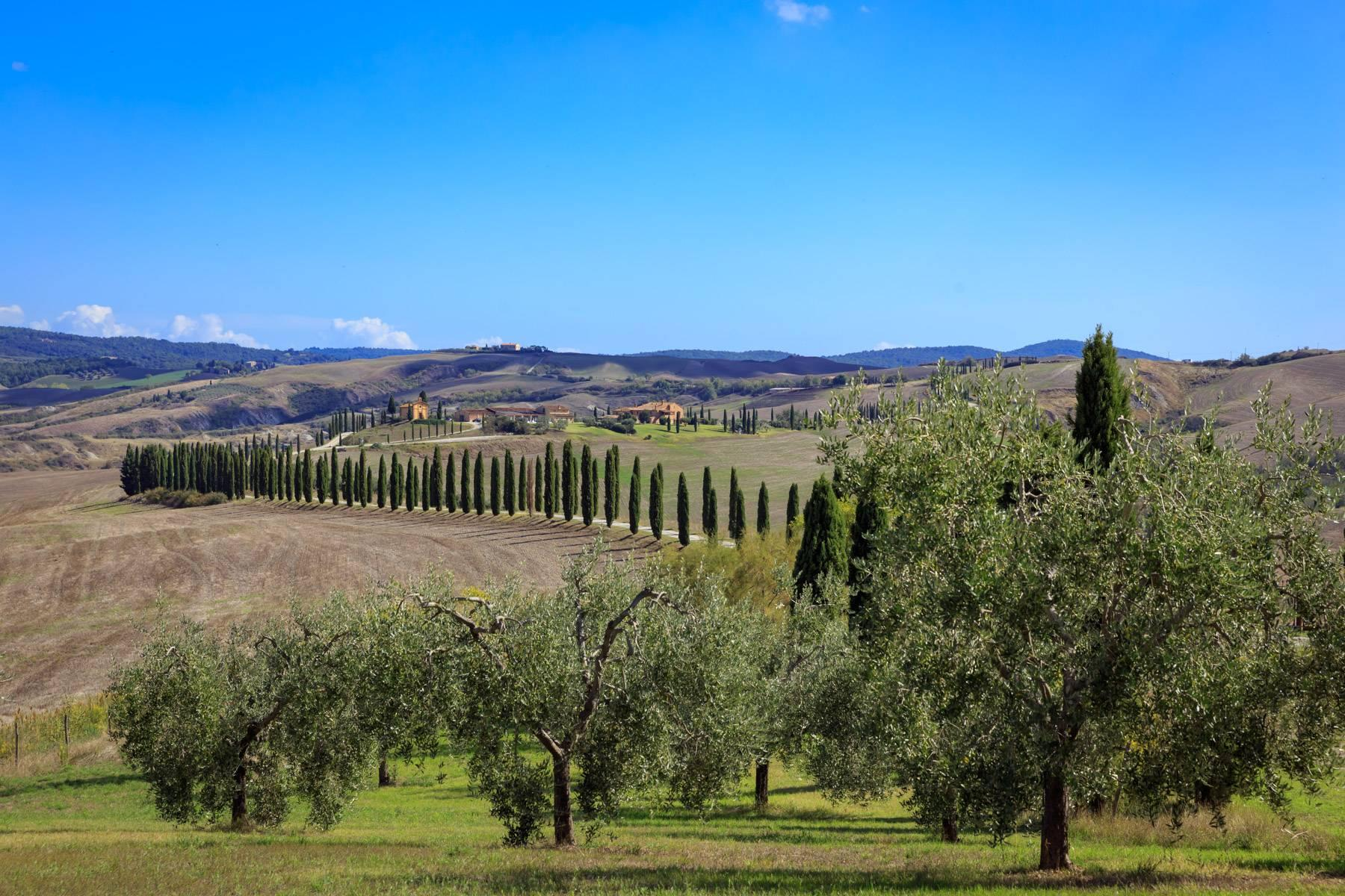 Wonderful tuscan countryhouse on the hills around Siena - 13