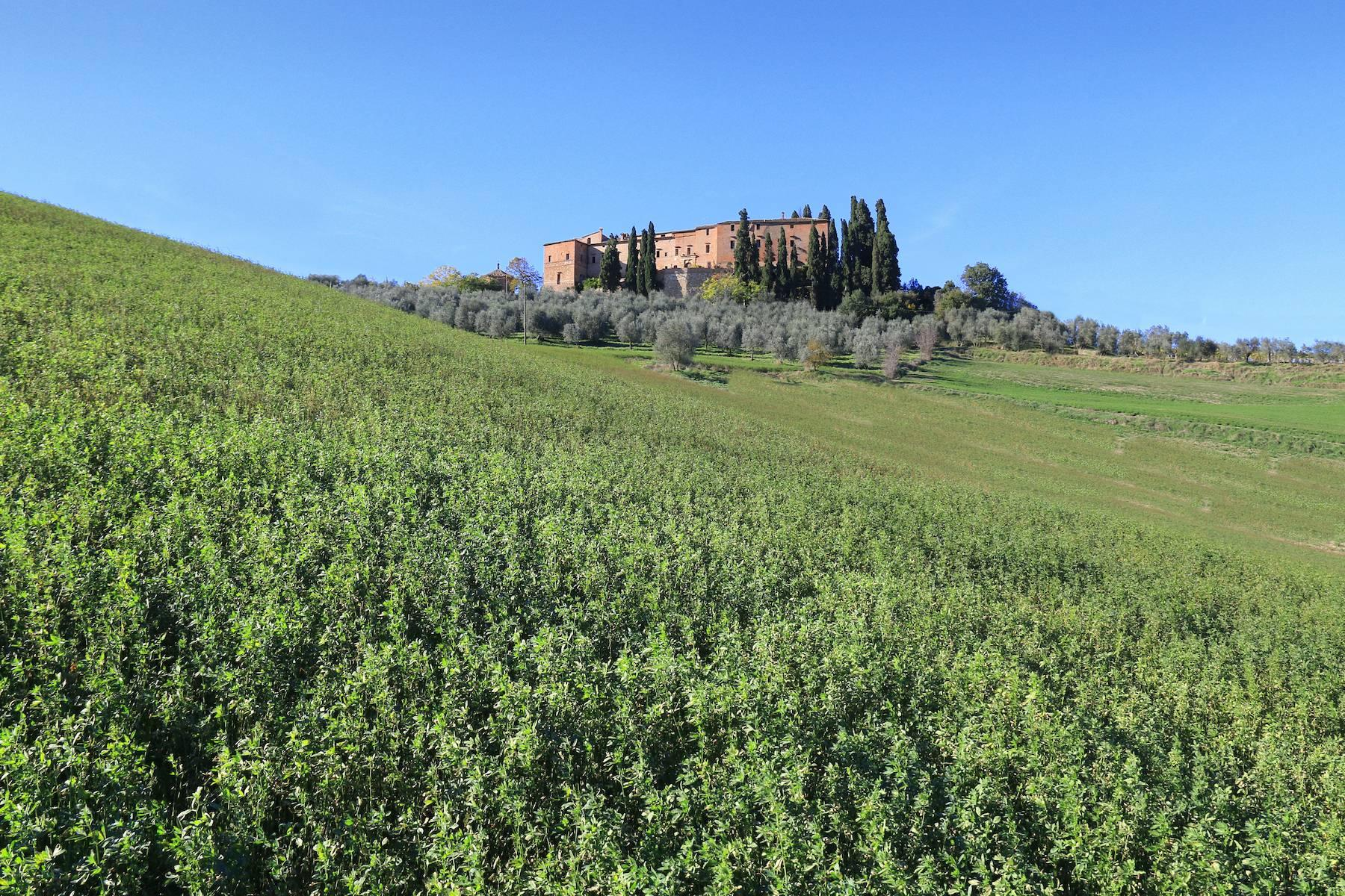 Stunning Castle in the heart of Tuscany - 3