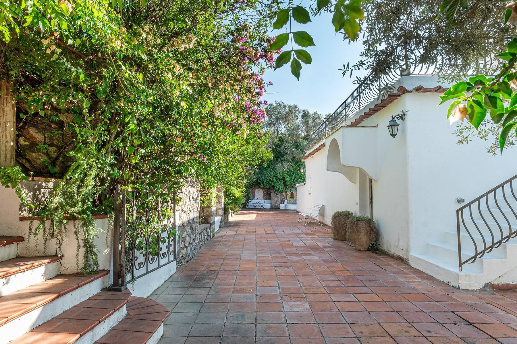 Charming villa with olive grove and swimming pool overlooking the sea - 19
