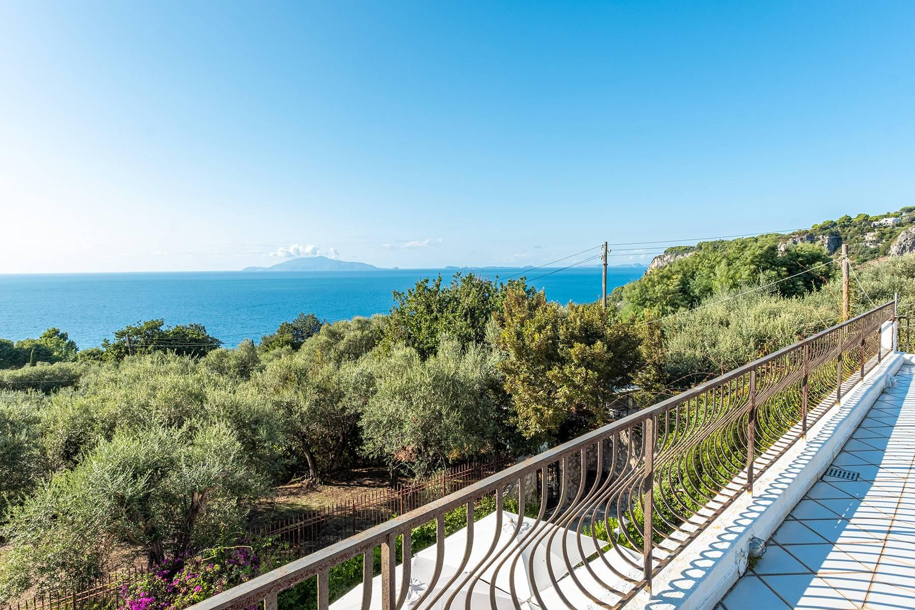Charming villa with olive grove and swimming pool overlooking the sea - 26