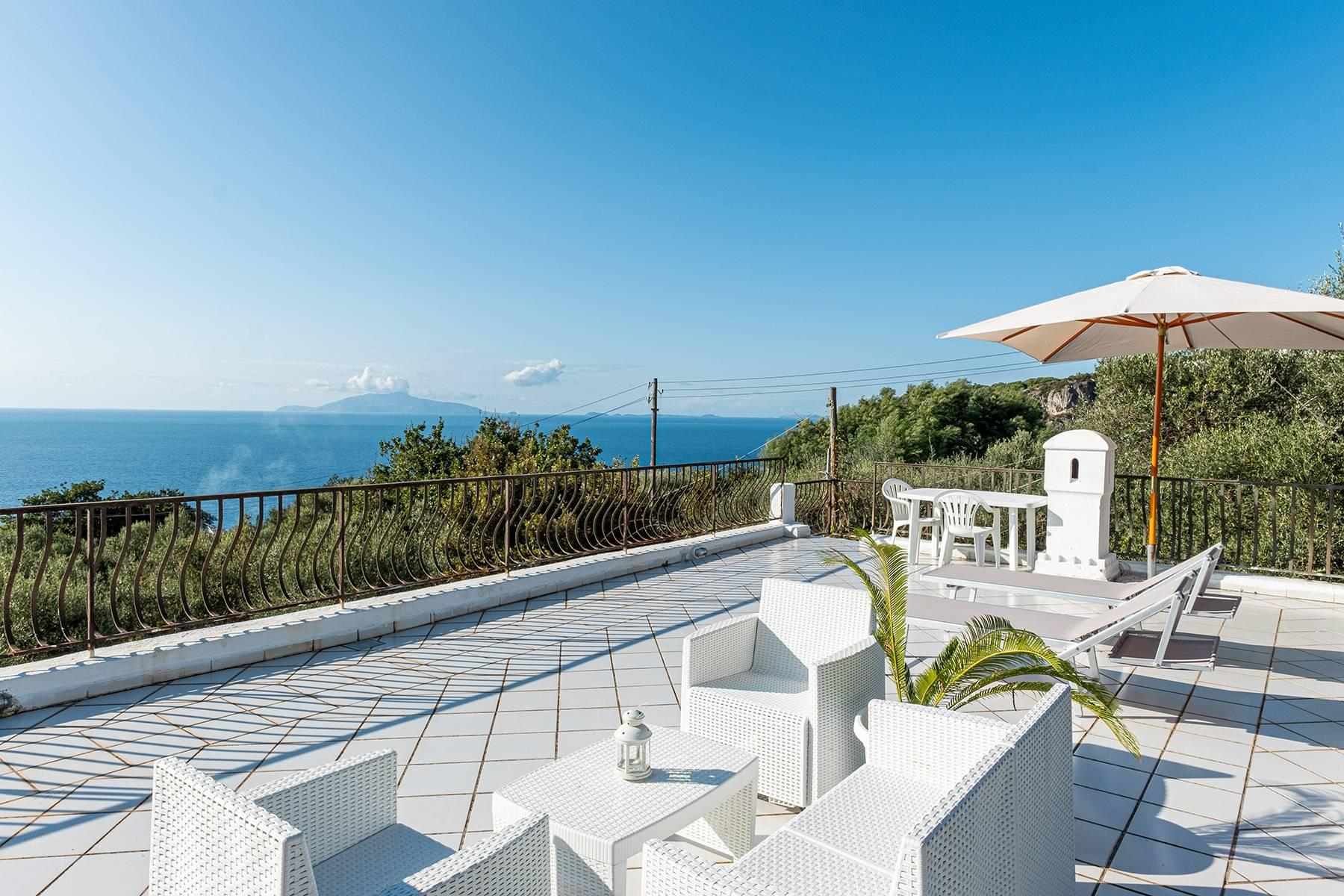Charming villa with olive grove and swimming pool overlooking the sea - 7