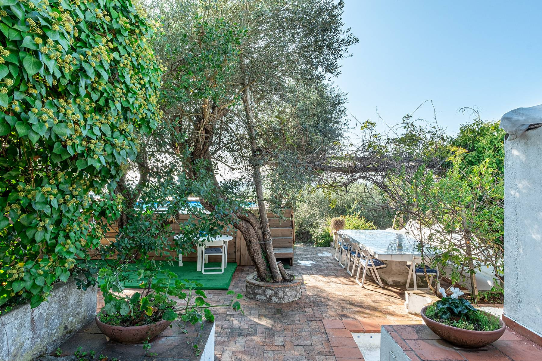 Charming villa with olive grove and swimming pool overlooking the sea - 21