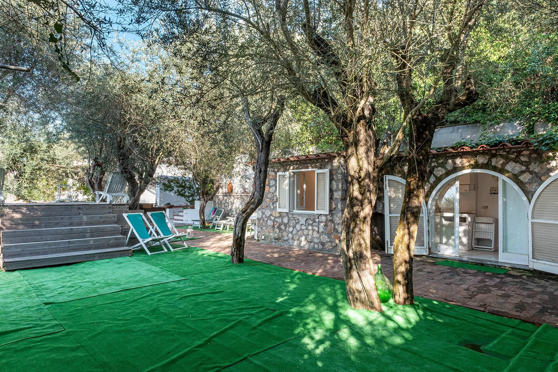 Charming villa with olive grove and swimming pool overlooking the sea - 20