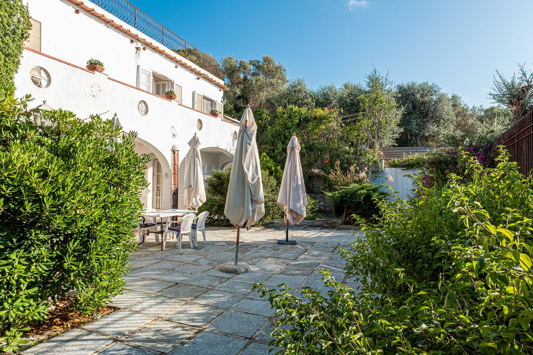 Charming villa with olive grove and swimming pool overlooking the sea - 5
