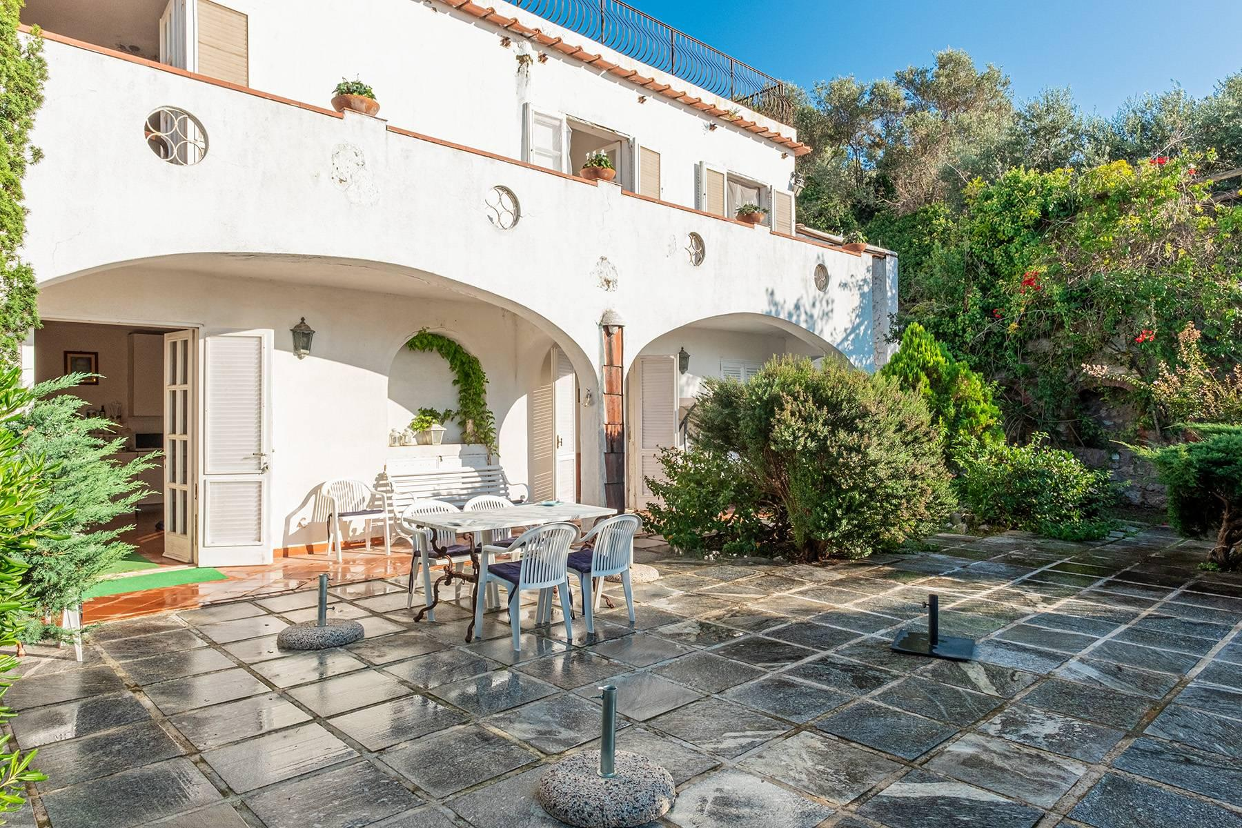 Charming villa with olive grove and swimming pool overlooking the sea - 23