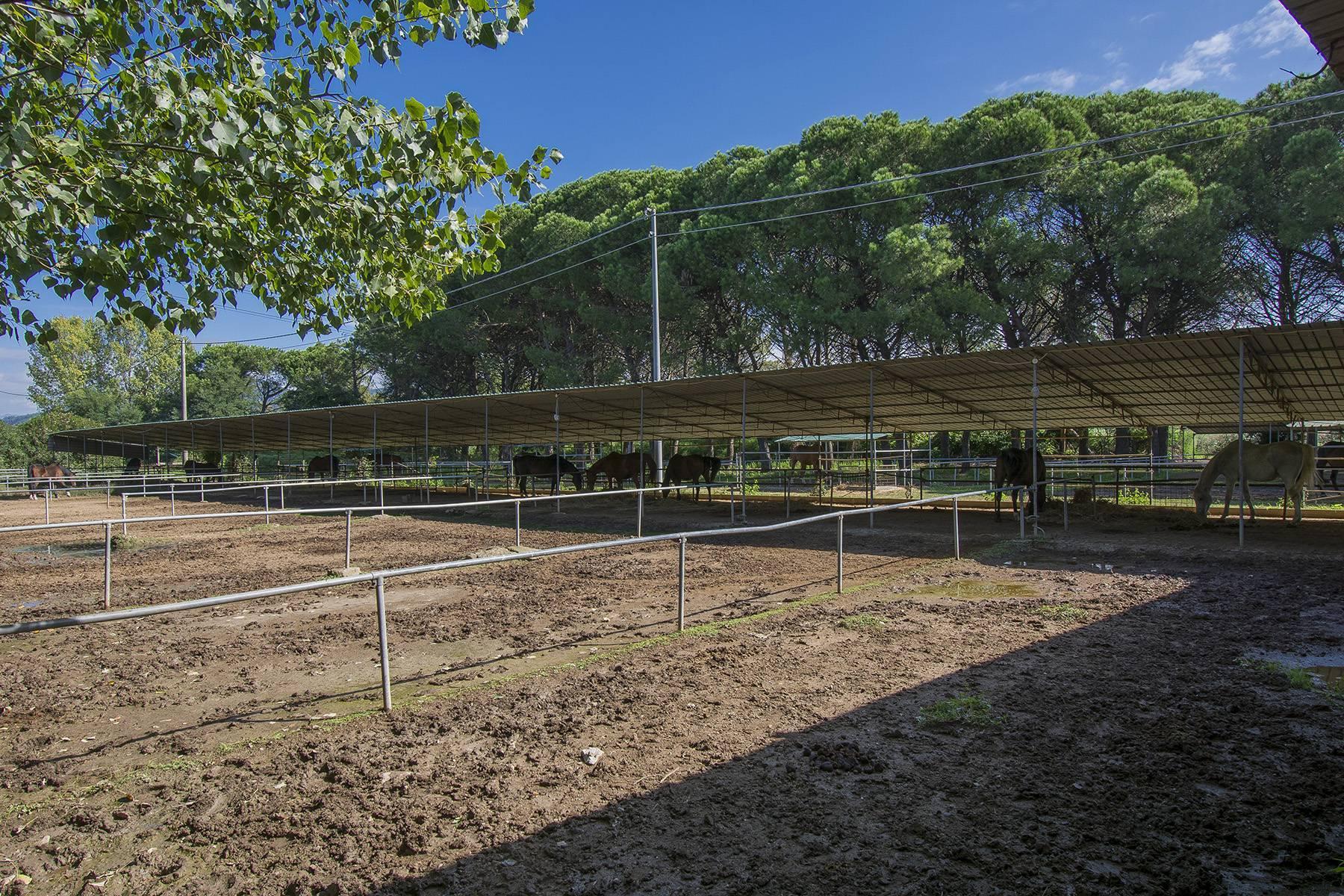 Bauernhaus mit Reitschule auf dem toskanischen Landschaft - 19