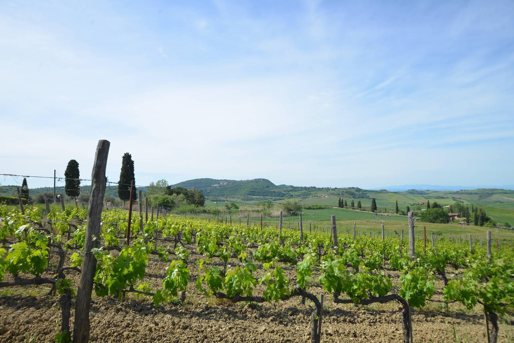 Beautiful country house with agriturismo and vineyard walking distance from Montepulciano - 12