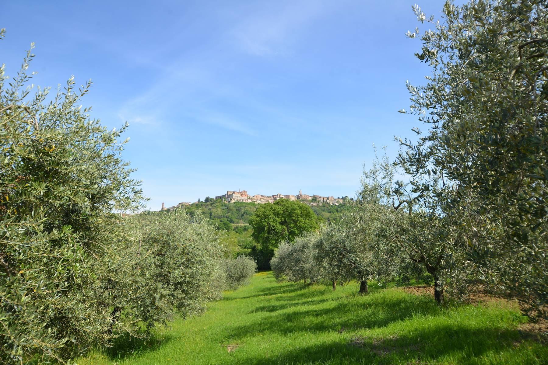 Casale con agriturismo e vigneto a pochi passi da Montepulciano - 13