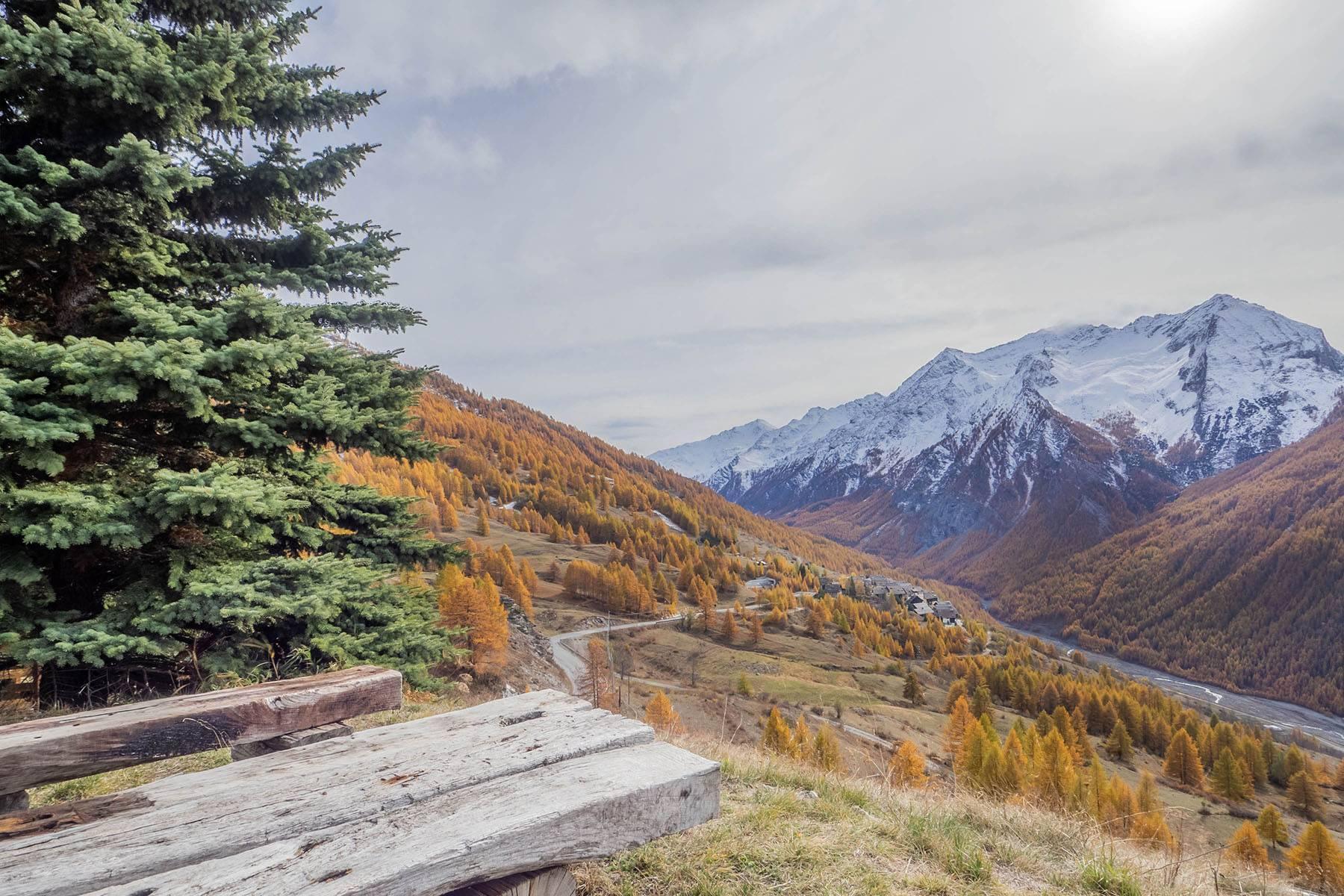 Magnifique chalet avec une position panoramique sur les Alpes - 20