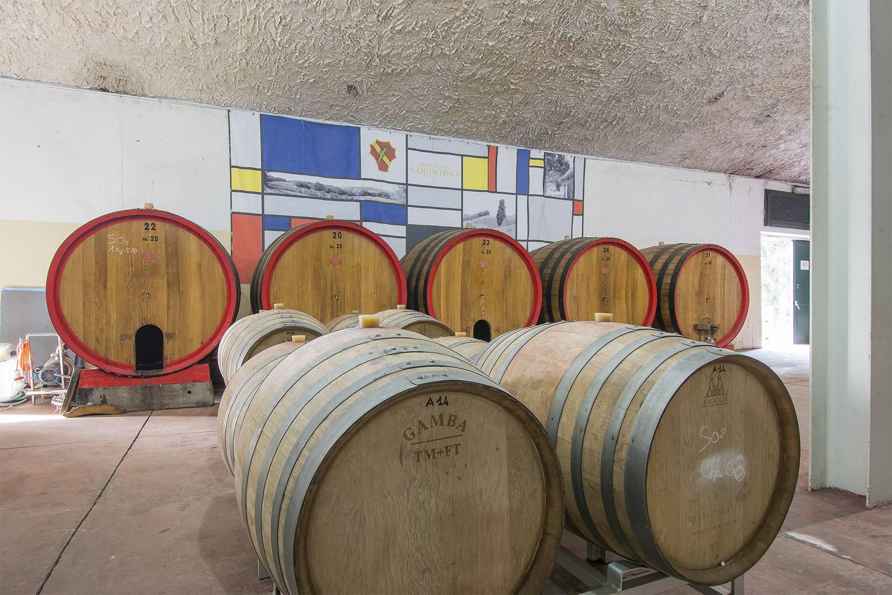 Weingut mit historischer Villa in San Miniato, Pisa - 18