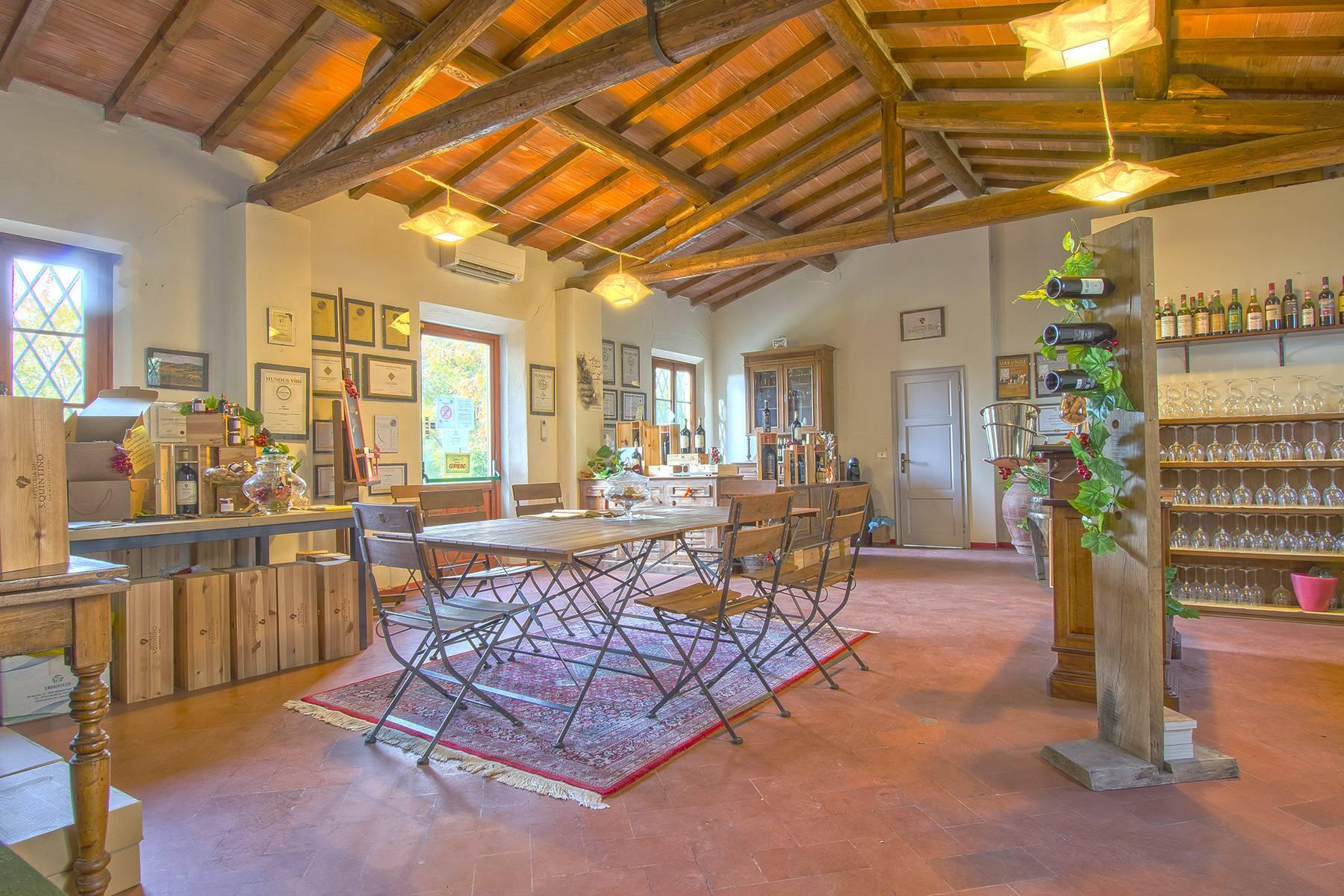 Weingut mit historischer Villa in San Miniato, Pisa - 21