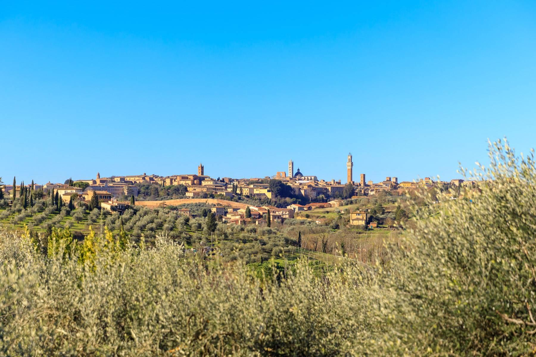 Wonderful historical Villa and country house close by Siena - 2