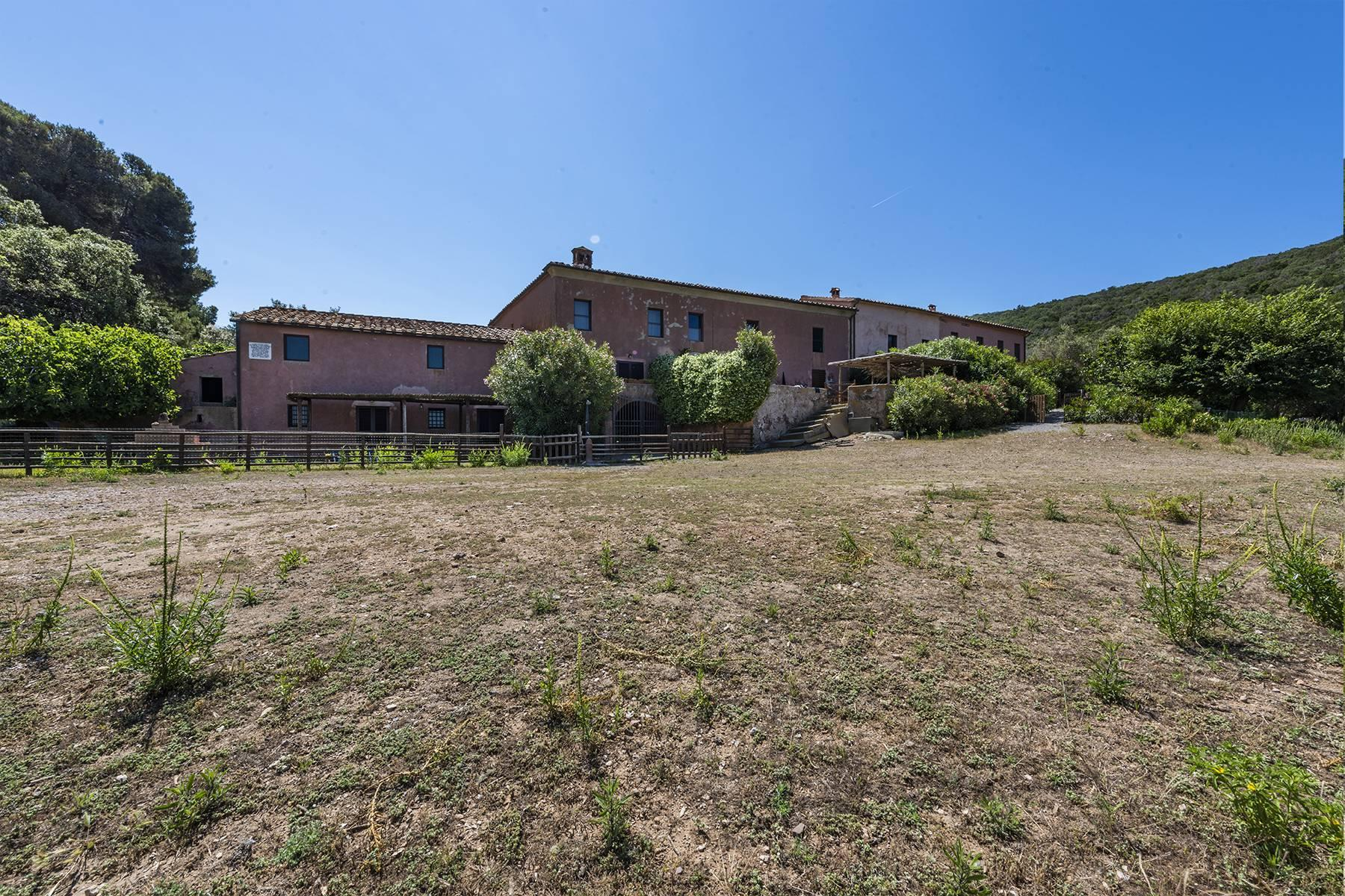 Extraordinary estate in the heart of Maremma - 8