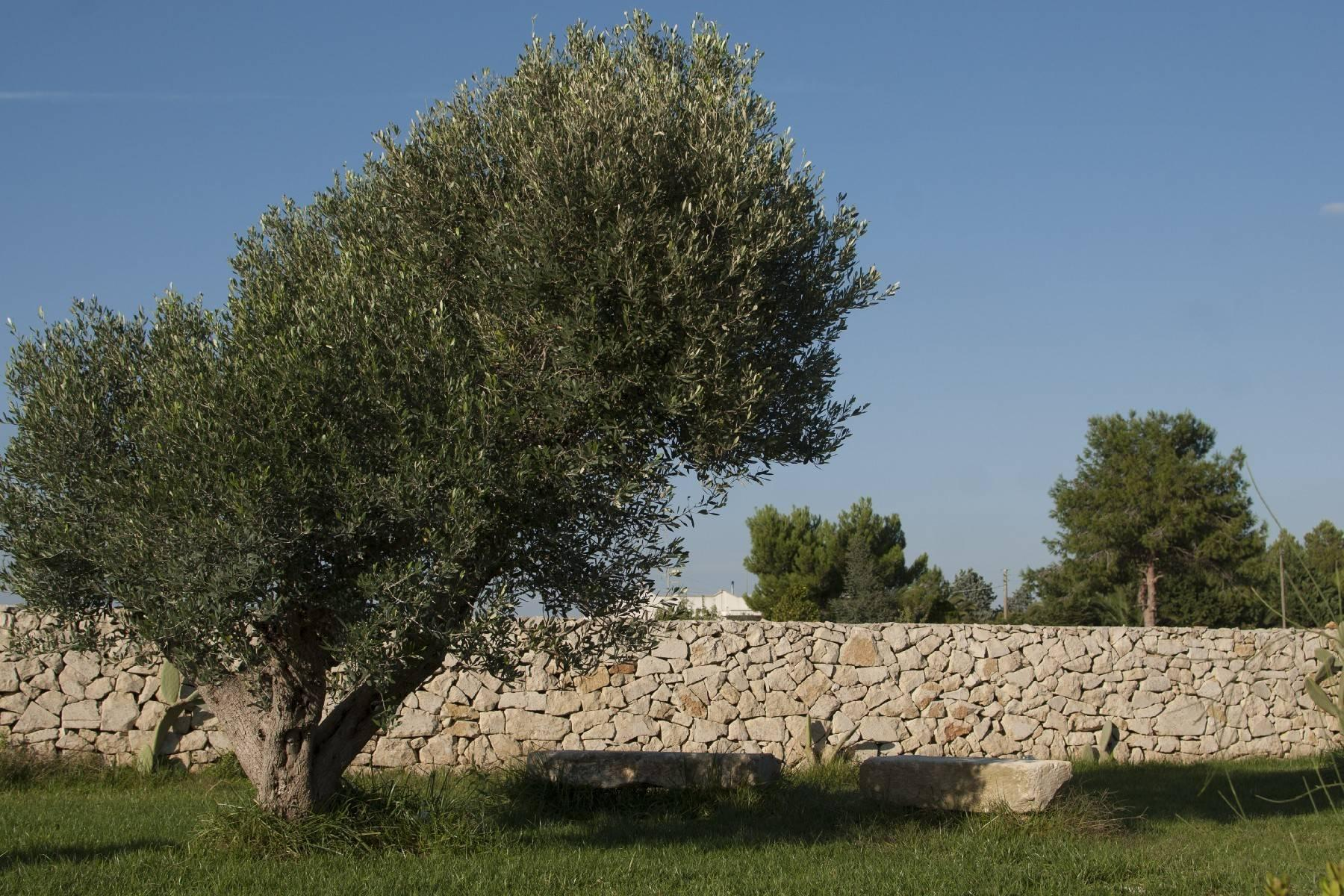 Charming masseria with sea view - 8
