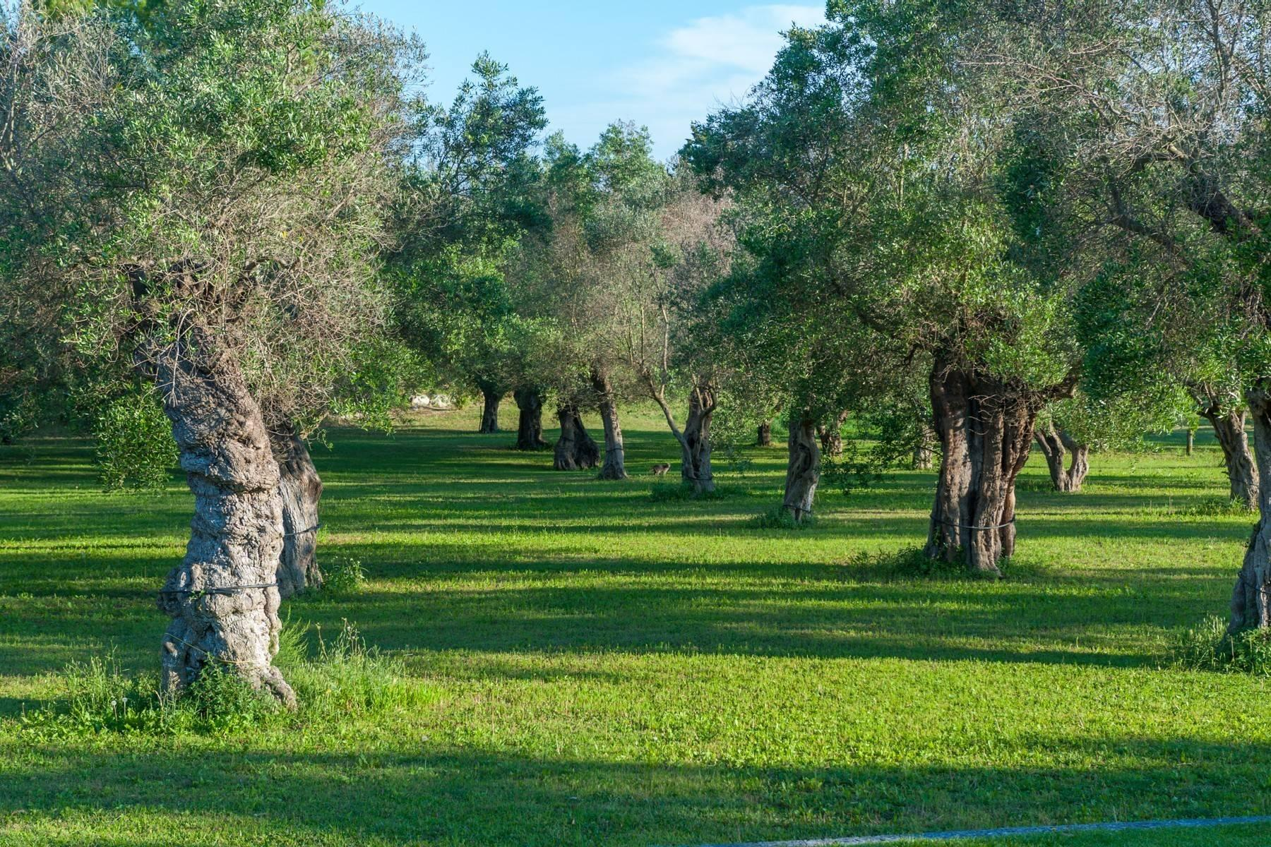 Charming masseria with sea view - 10