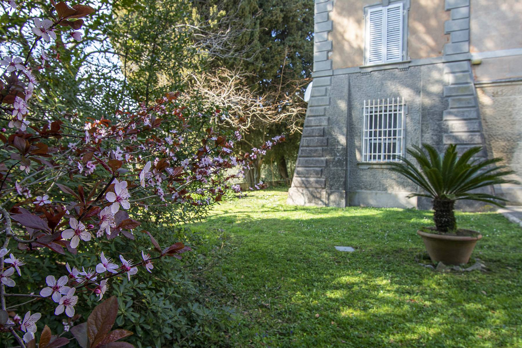 Romantic villa on the hills between Pisa and Lucca - 2