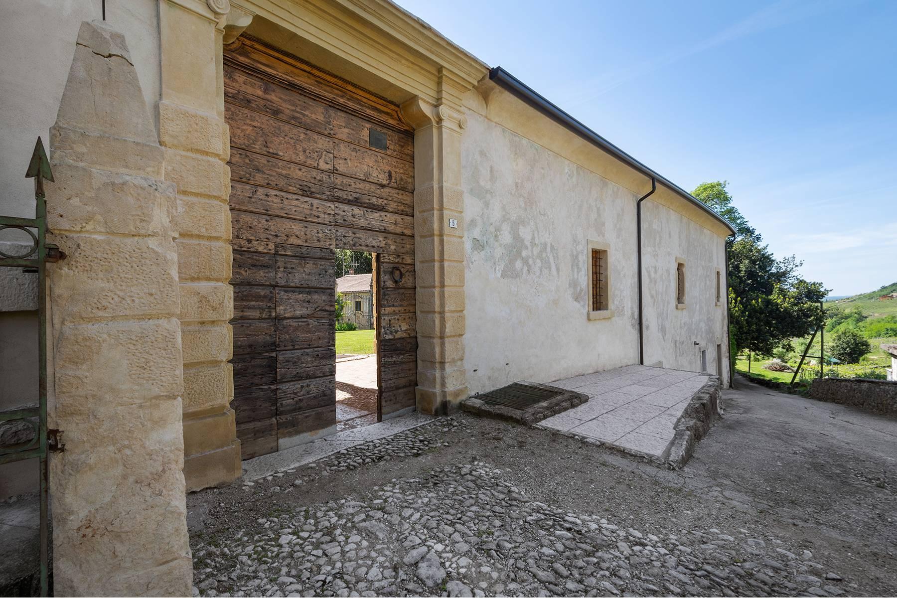 Historische Villa mit Park und prächtigem alten Keller, umgeben von Weinbergen - 32