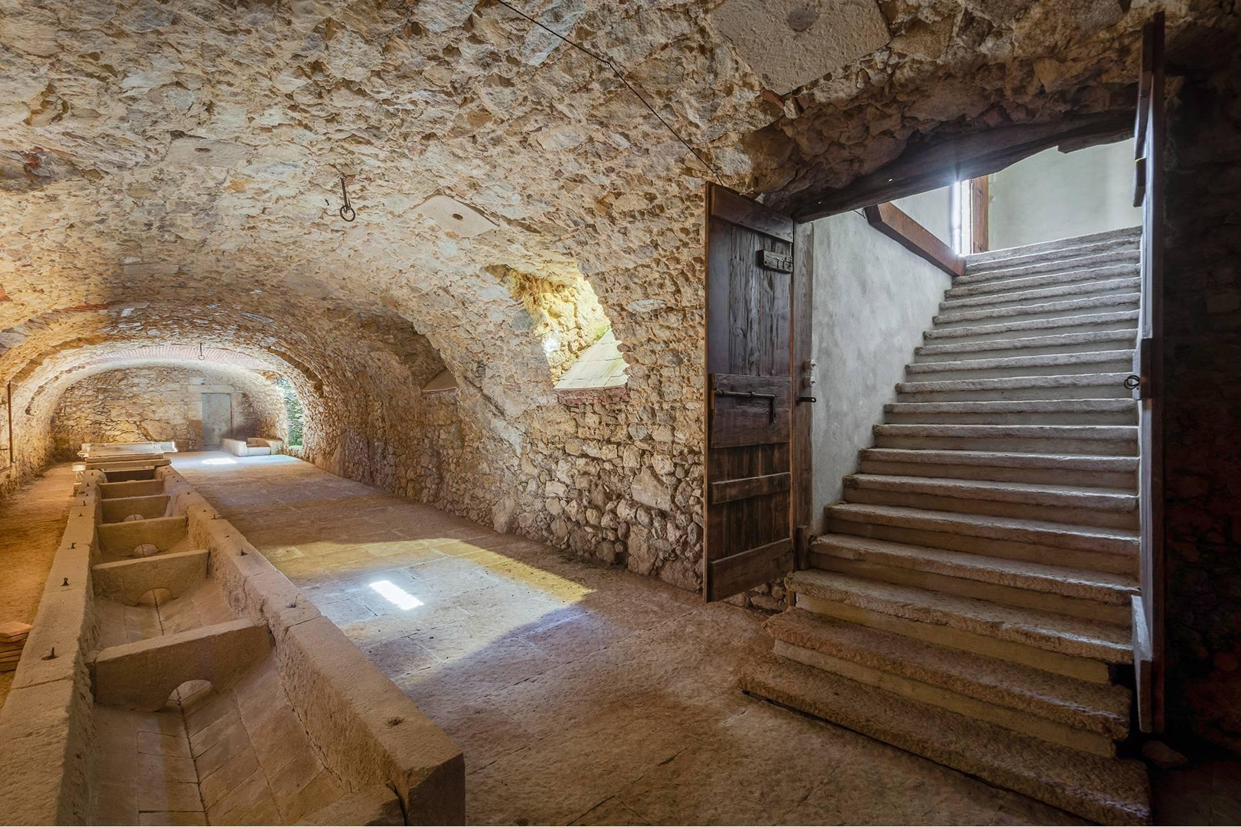 Historische Villa mit Park und prächtigem alten Keller, umgeben von Weinbergen - 24