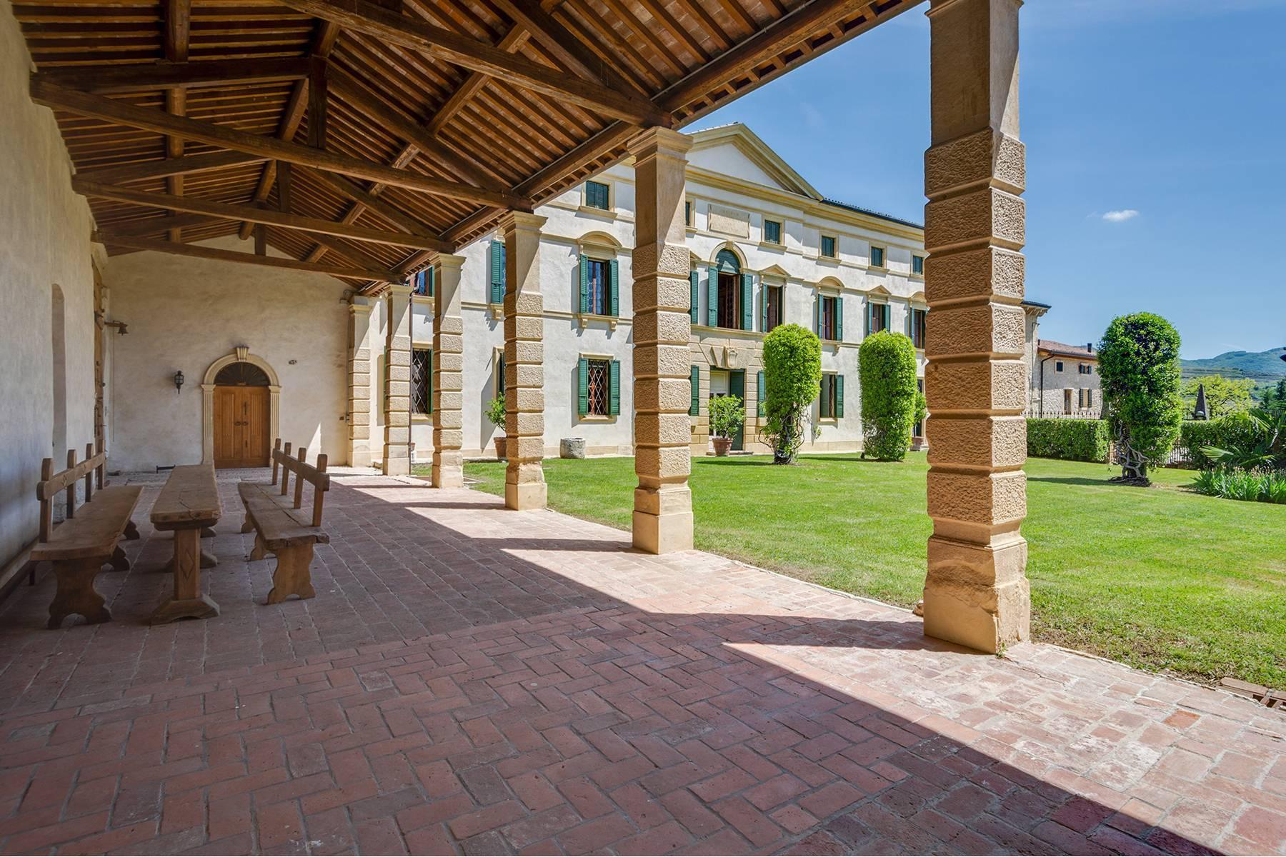 Historische Villa mit Park und prächtigem alten Keller, umgeben von Weinbergen - 8