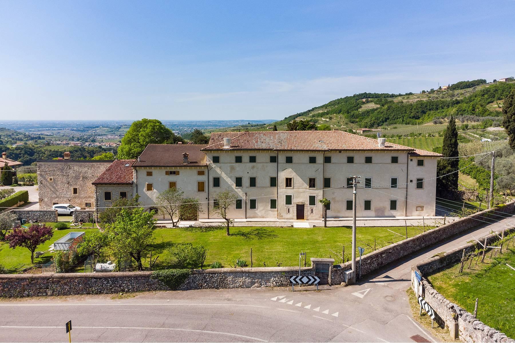 Historische Villa mit Park und prächtigem alten Keller, umgeben von Weinbergen - 6