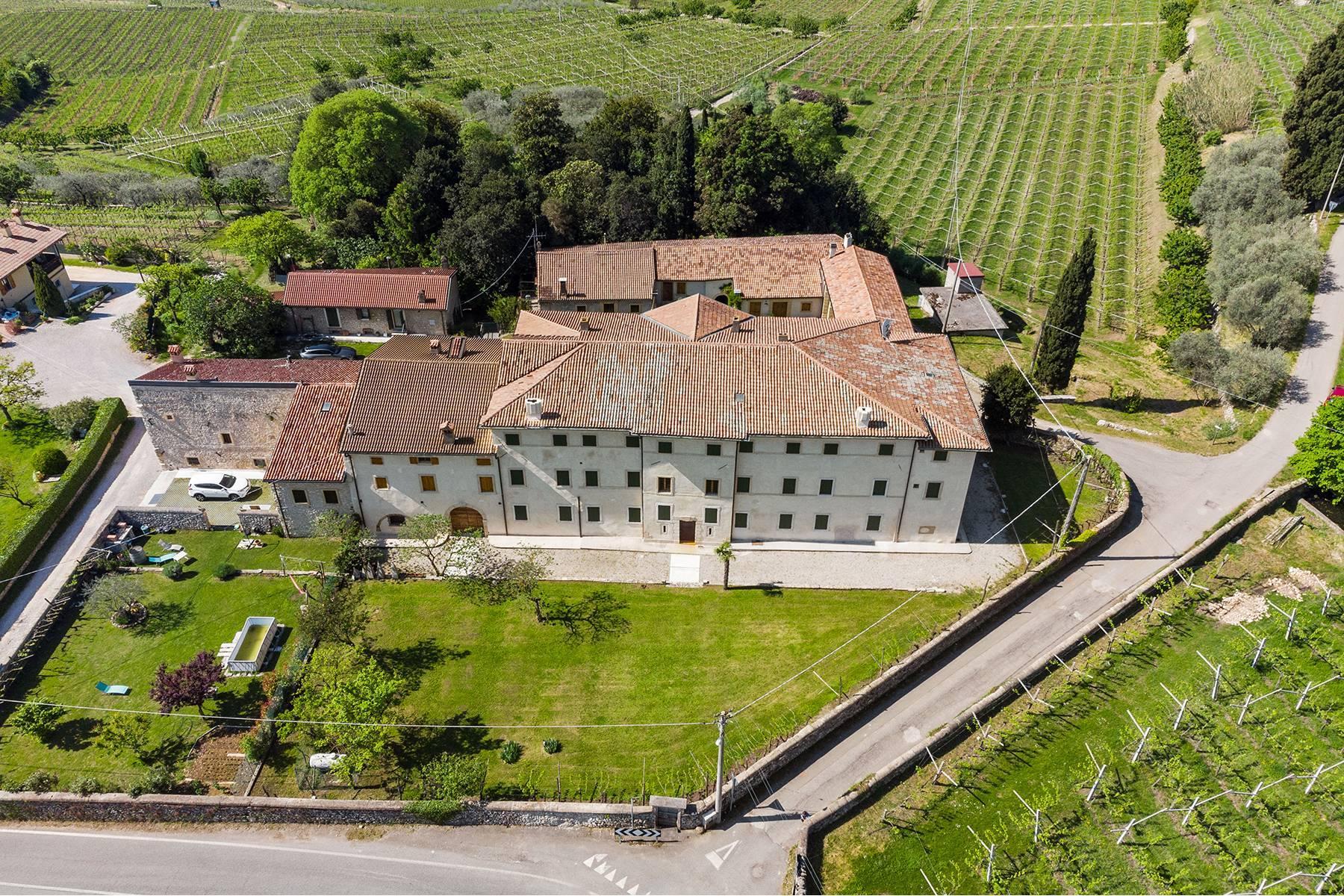 Historische Villa mit Park und prächtigem alten Keller, umgeben von Weinbergen - 43