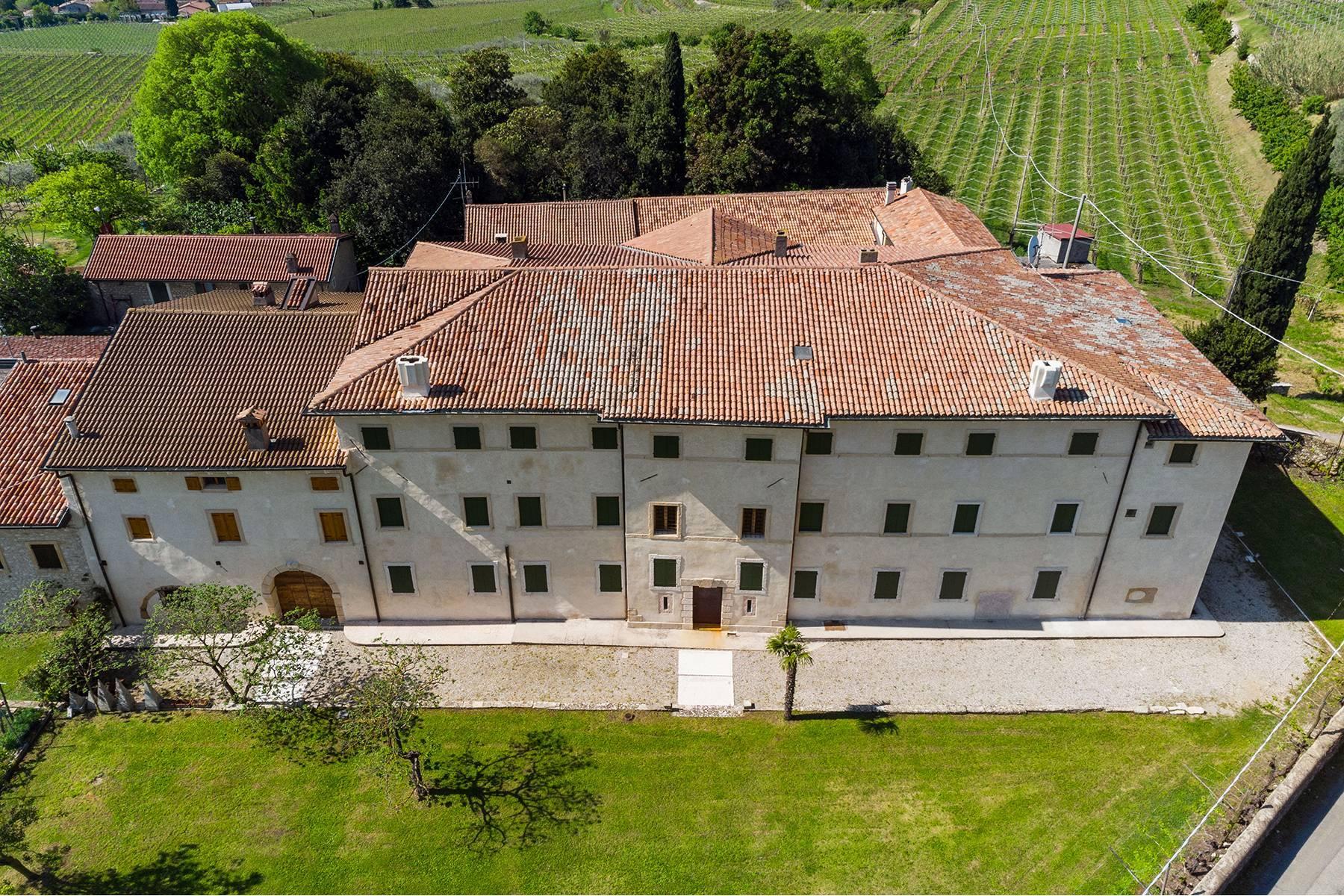 Historische Villa mit Park und prächtigem alten Keller, umgeben von Weinbergen - 5