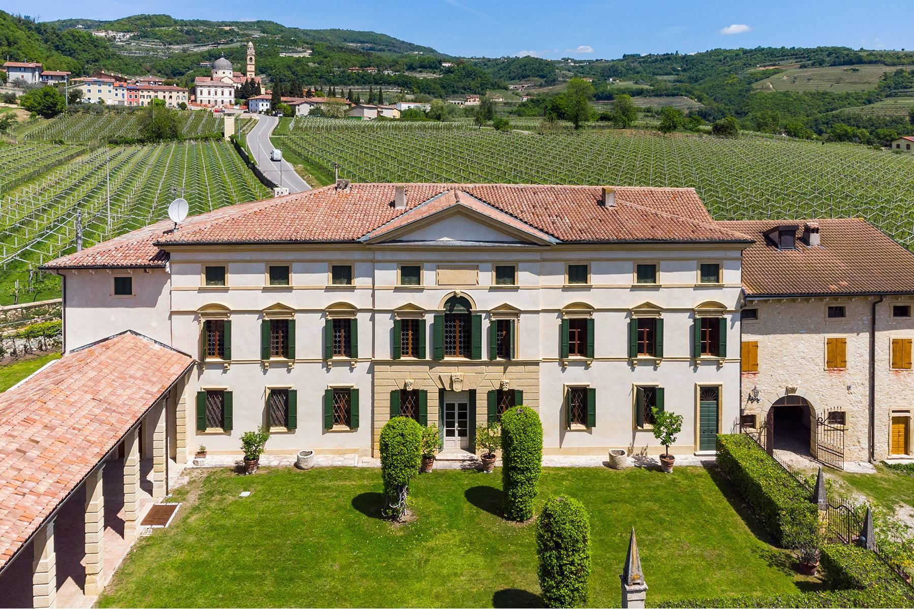 Historische Villa mit Park und prächtigem alten Keller, umgeben von Weinbergen - 1