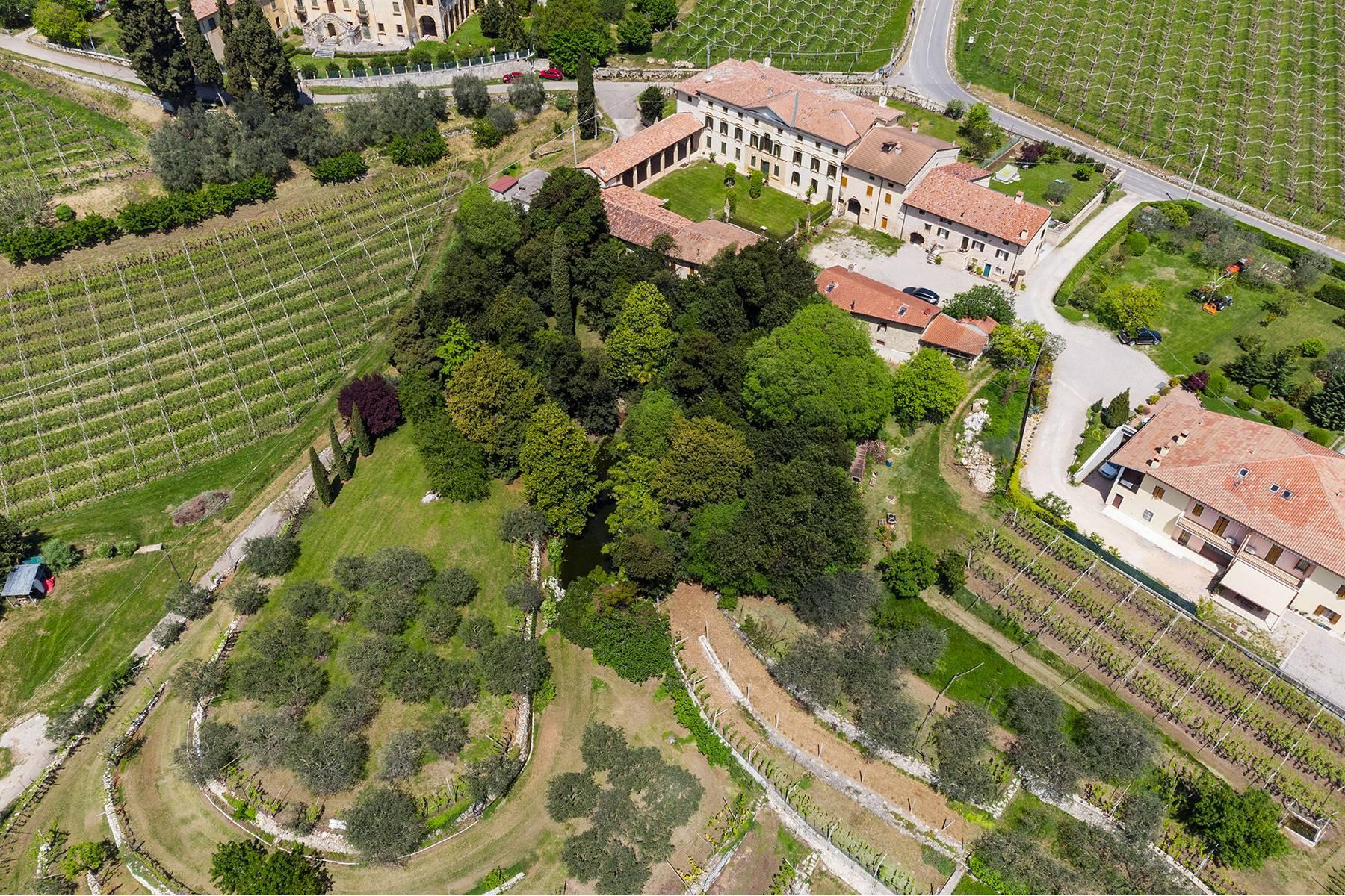 Historische Villa mit Park und prächtigem alten Keller, umgeben von Weinbergen - 4