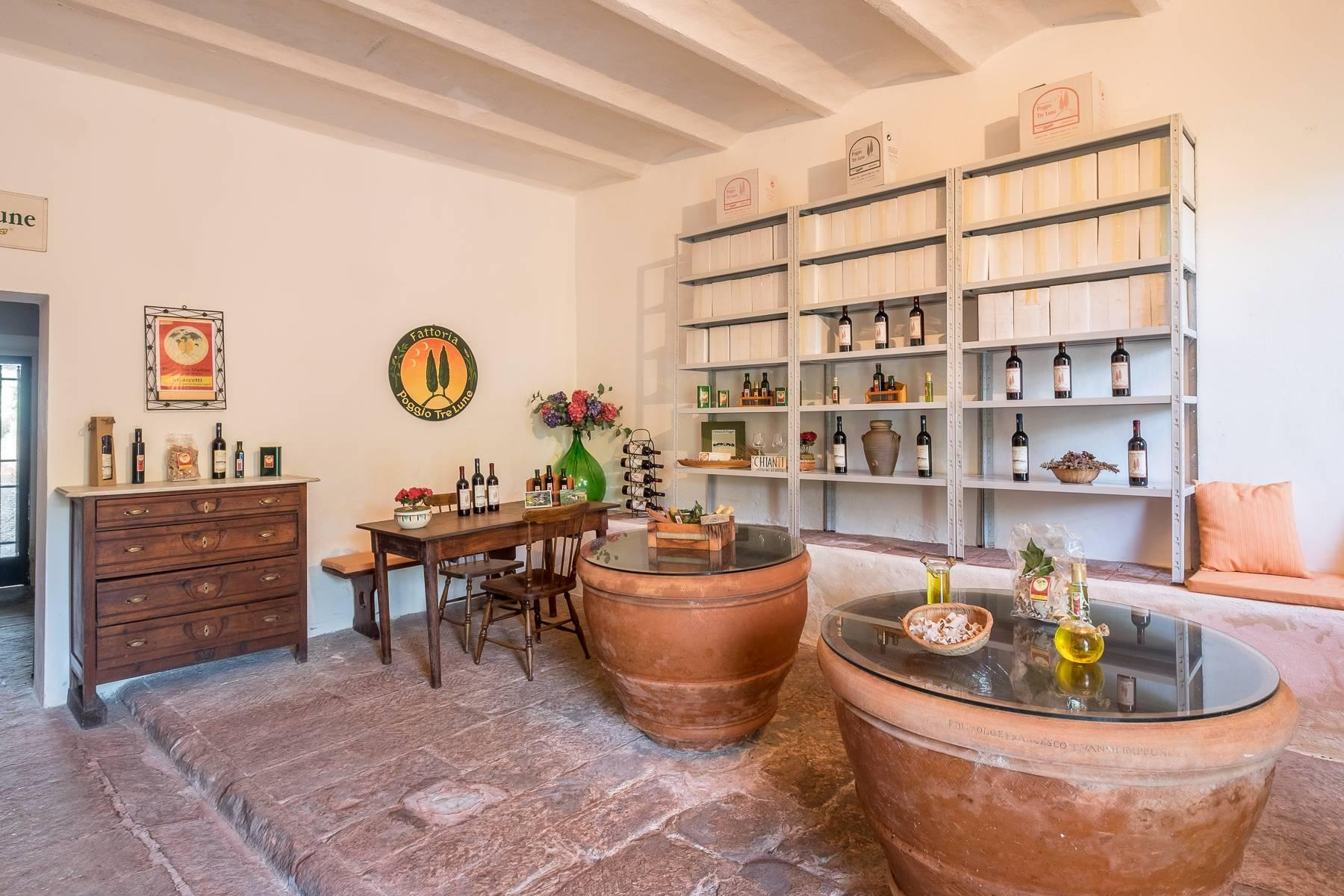Spectacular Villa and Farmstead close to Florence - 63