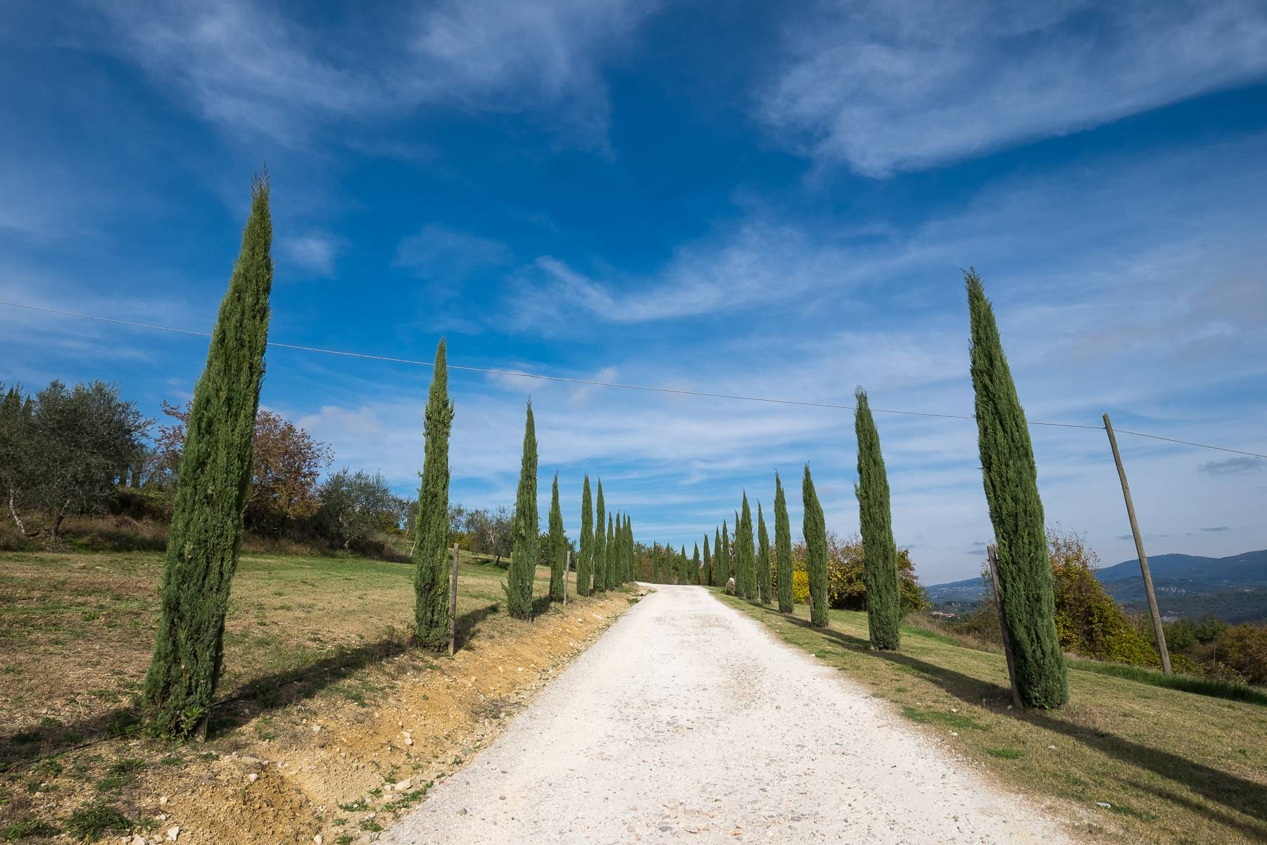 Spectacular Villa and Farmstead close to Florence - 64