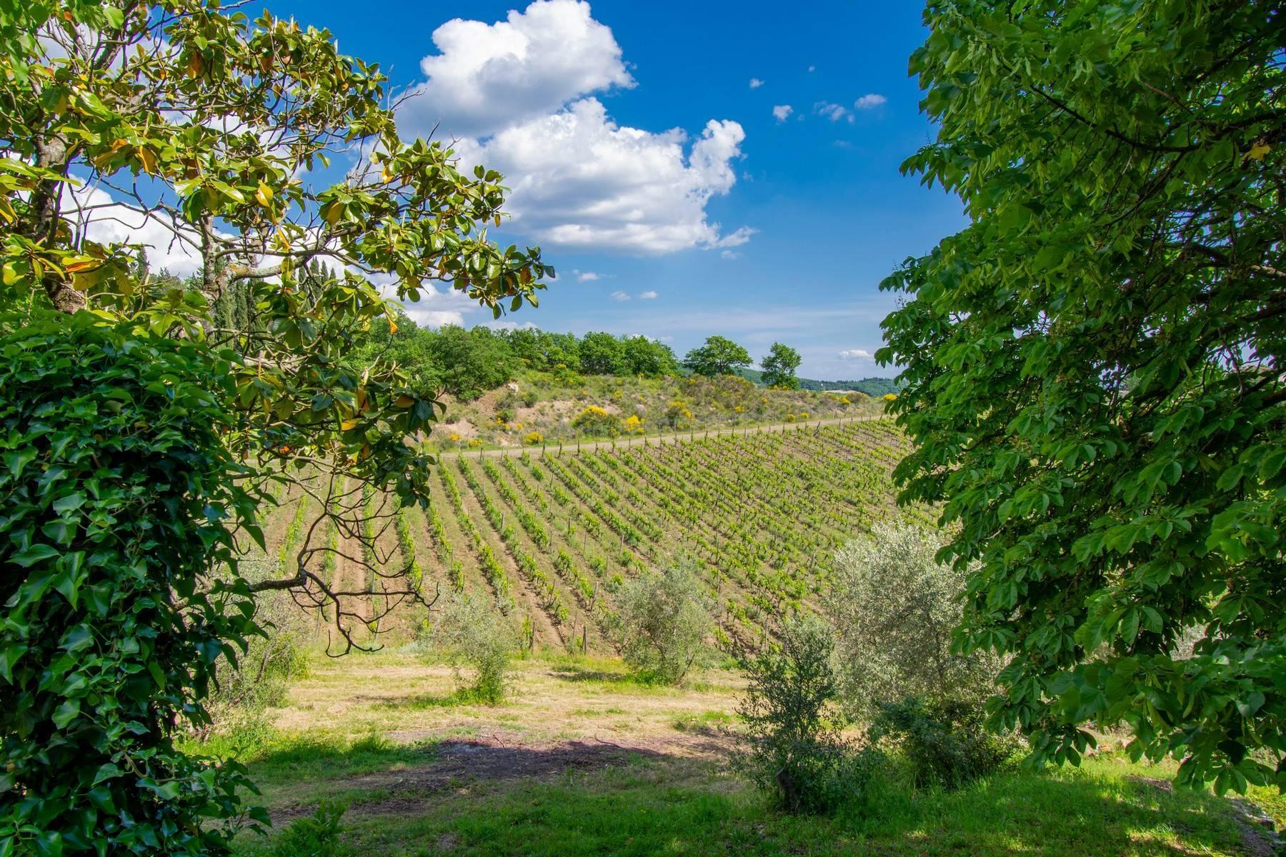 Esclusive wine estate in the heart of Chianti classico - 24
