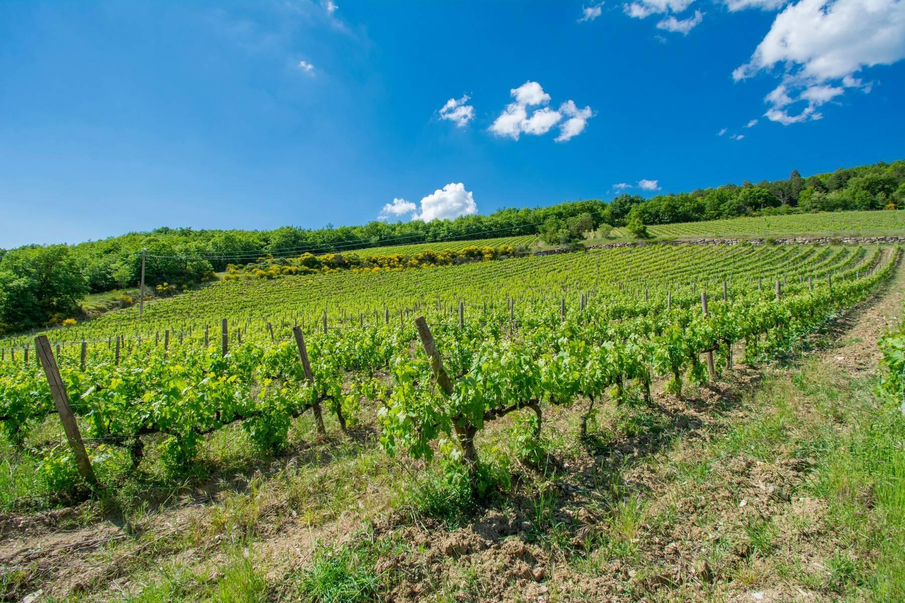Esclusive wine estate in the heart of Chianti classico - 27