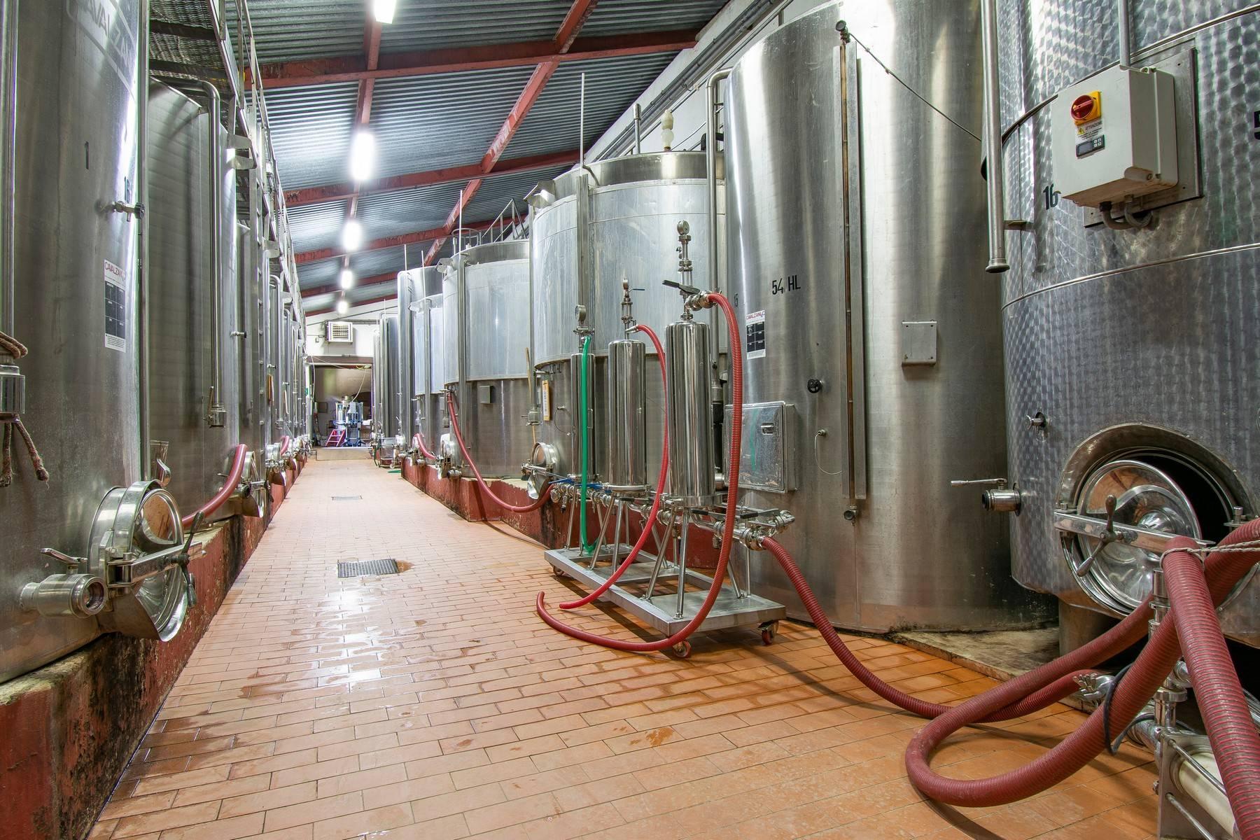 Esclusive wine estate in the heart of Chianti classico - 15