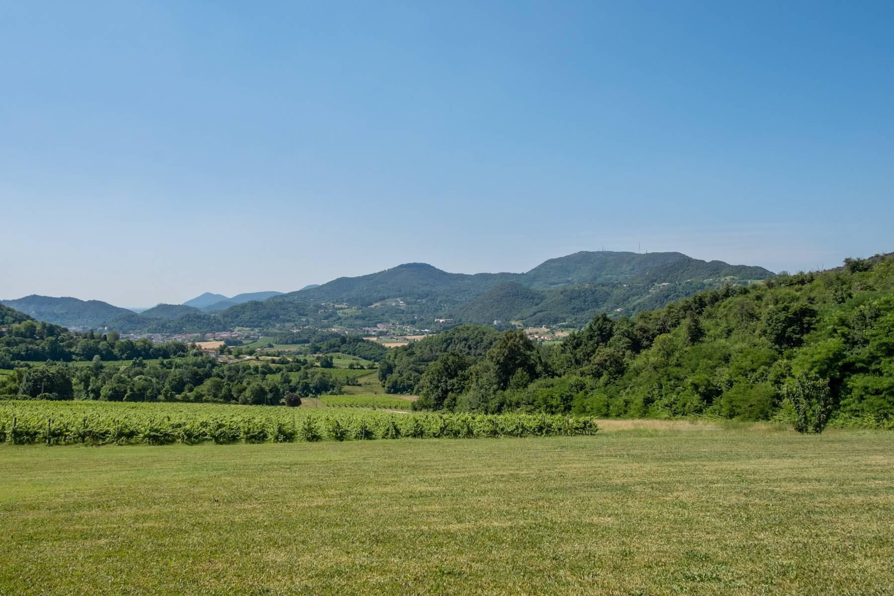 Fabelhaft renoviertes Bauernhaus auf den Hügeln mit Schwimmbad und landwirtschaftlichem Anwesen mit Weinbergen - 4
