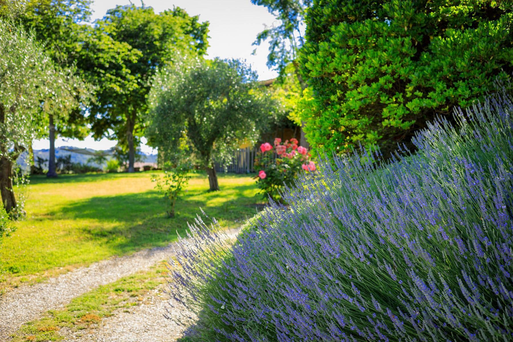 Storica fattoria nel cuore del Chianti Classico - 30