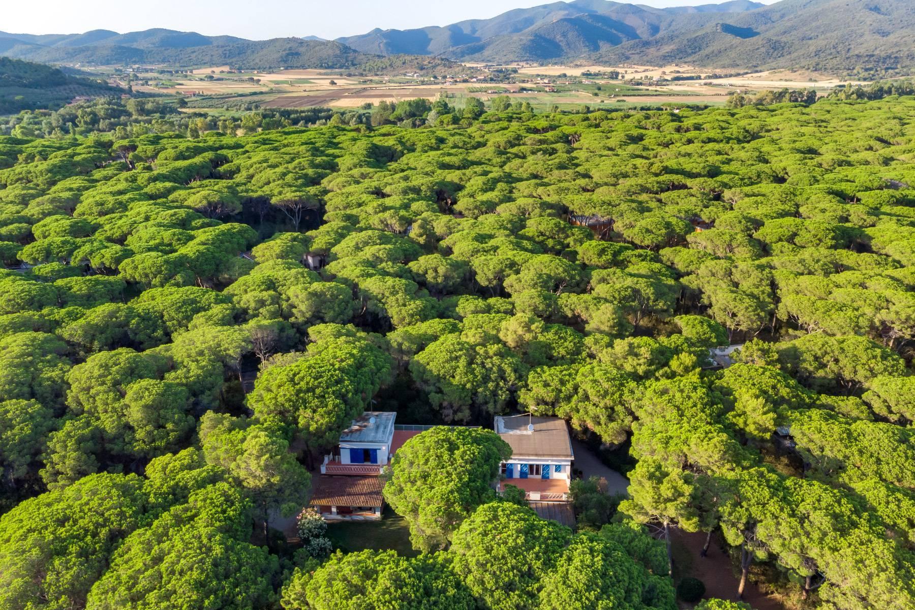 Villa esclusiva a Punta Ala - 29